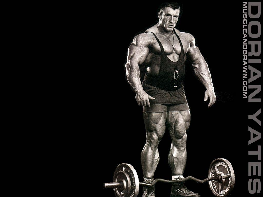 Bodybuilding Wallpapers, Awesome Backgrounds | Bodybuilding ...