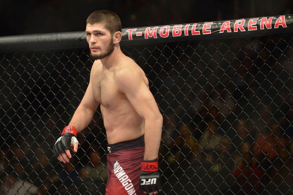 Tony Ferguson Wallpaper: Khabib Nurmagomedov Wallpapers