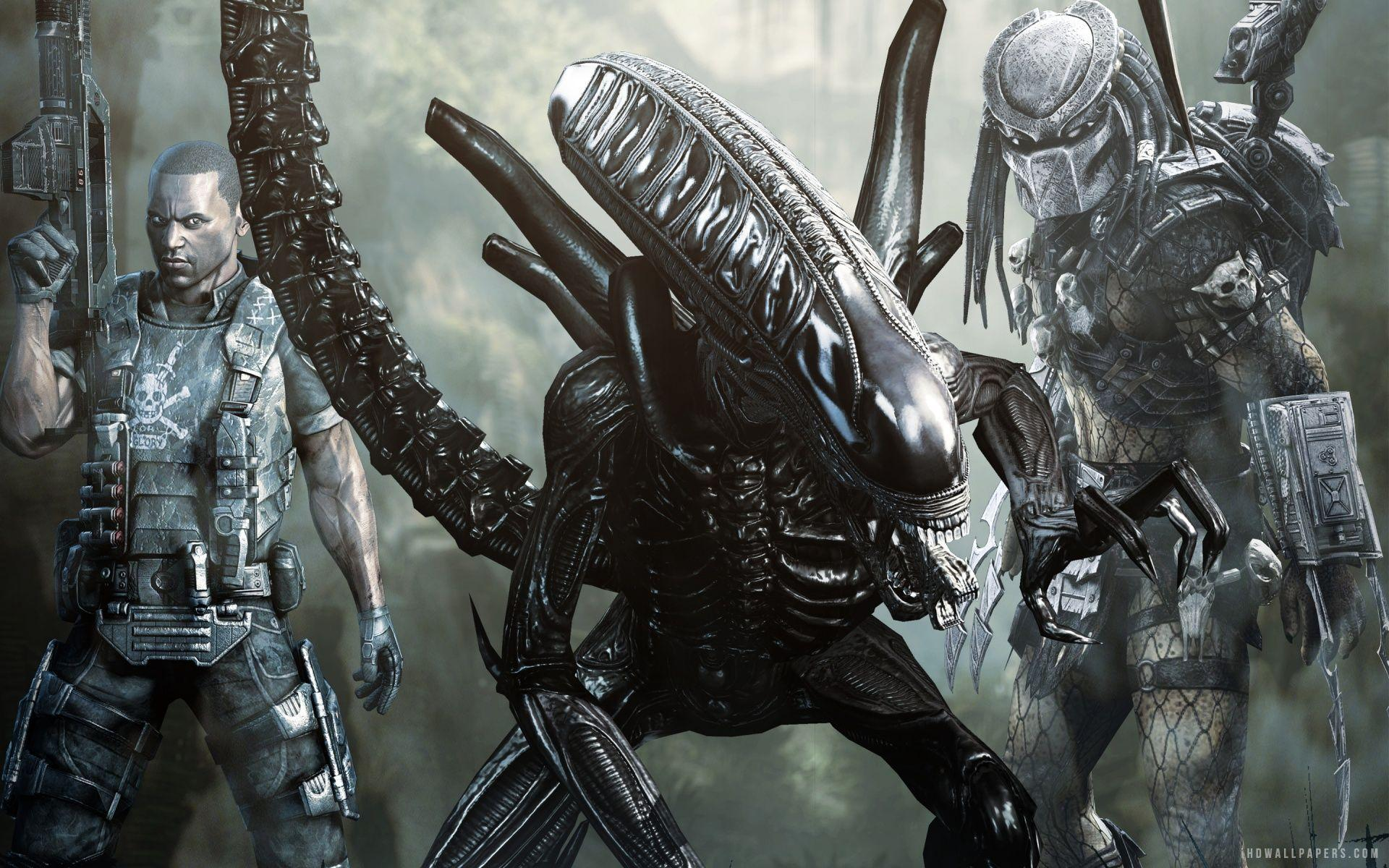 Photo Collection Aliens Vs Predator Wallpapers