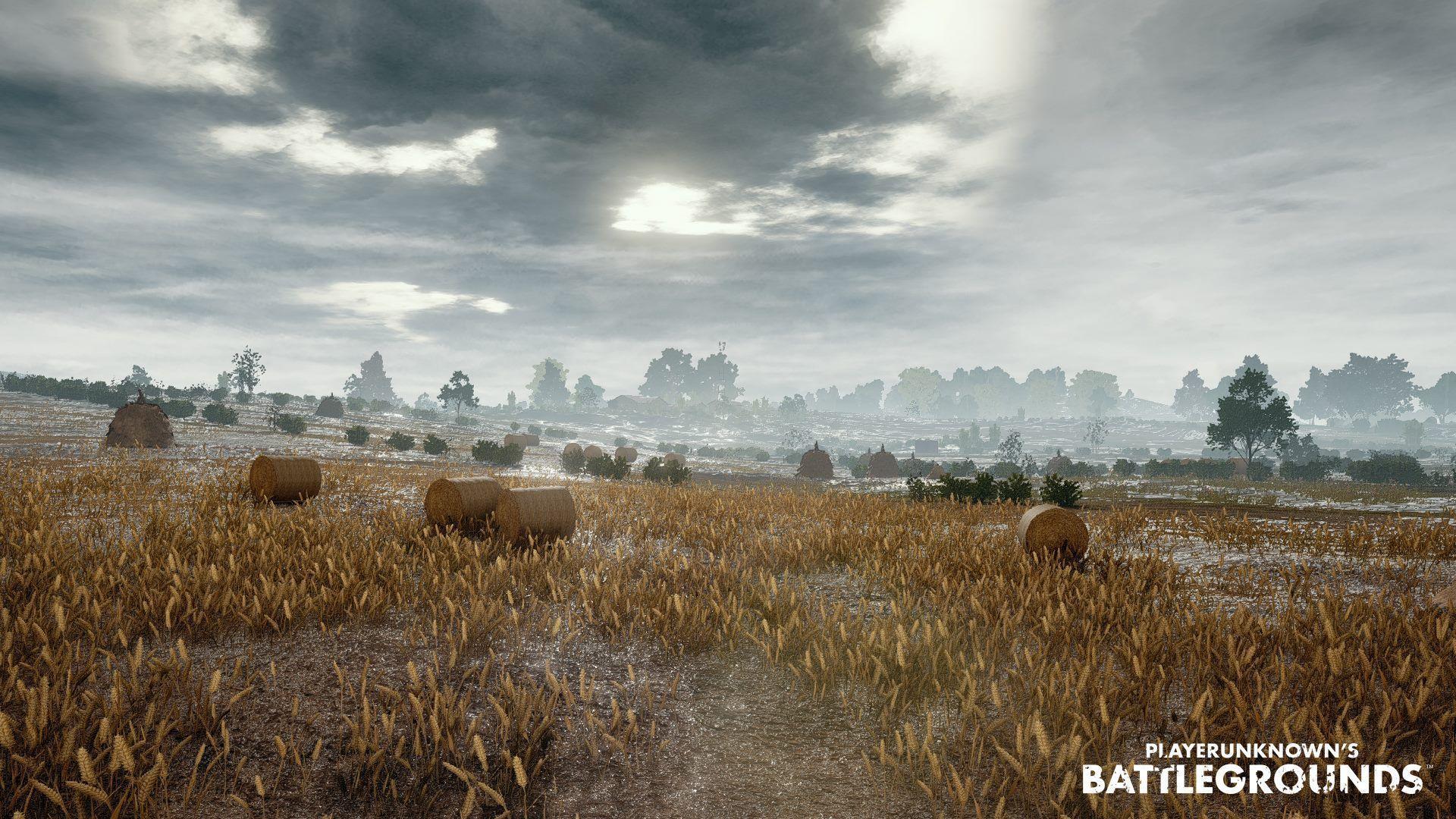 Playerunknowns Battlegrounds Wallpaper Hd Sokolvineyard Com