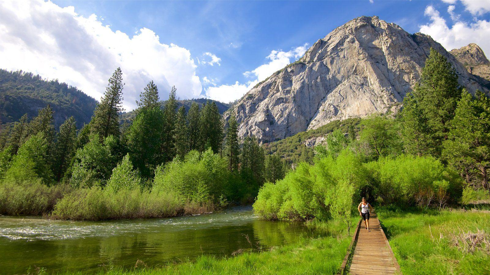 People Pictures: View Image of Sequoia and Kings Canyon National