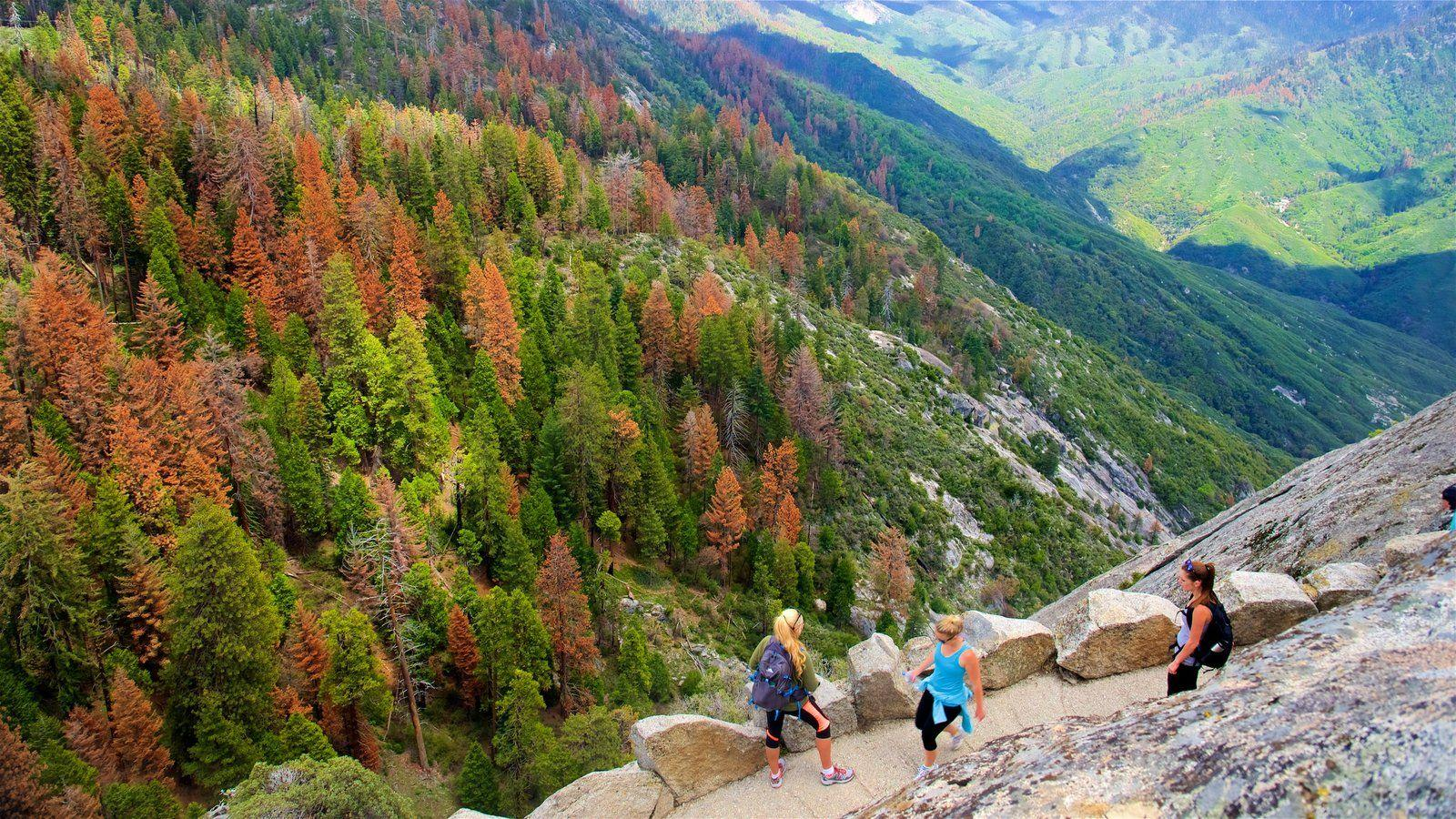 Fall Pictures: View Image of Sequoia and Kings Canyon National Parks