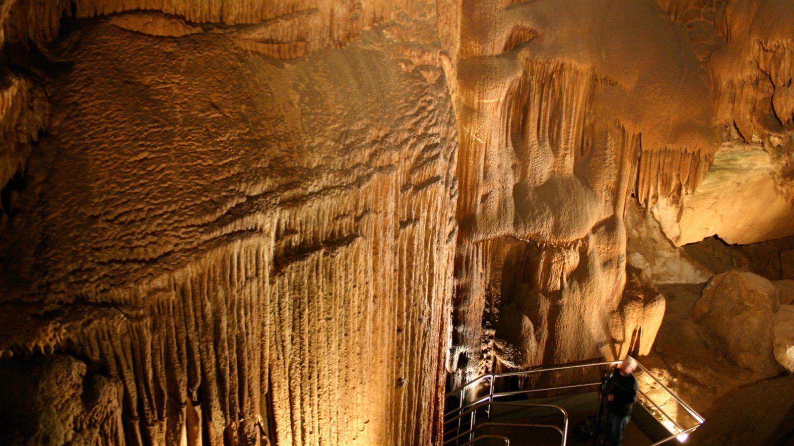 Mammoth Cave National Park Pictures: View Photos & Image of