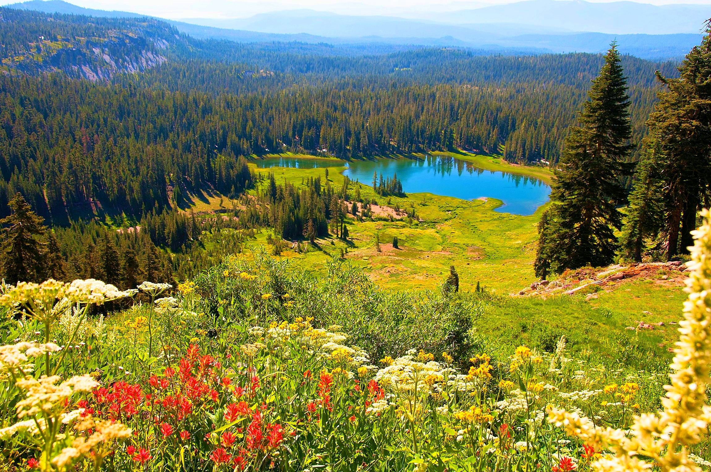 Lakes: Lassen Volcanic National Park Lake Forest Spring ...
