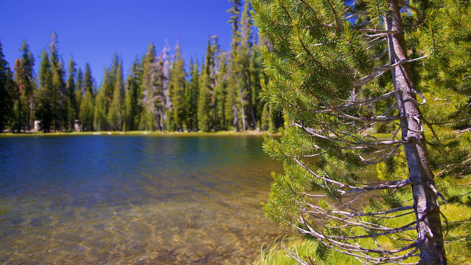 Lassen Volcanic National Park Pictures: View Photos & Images of ...