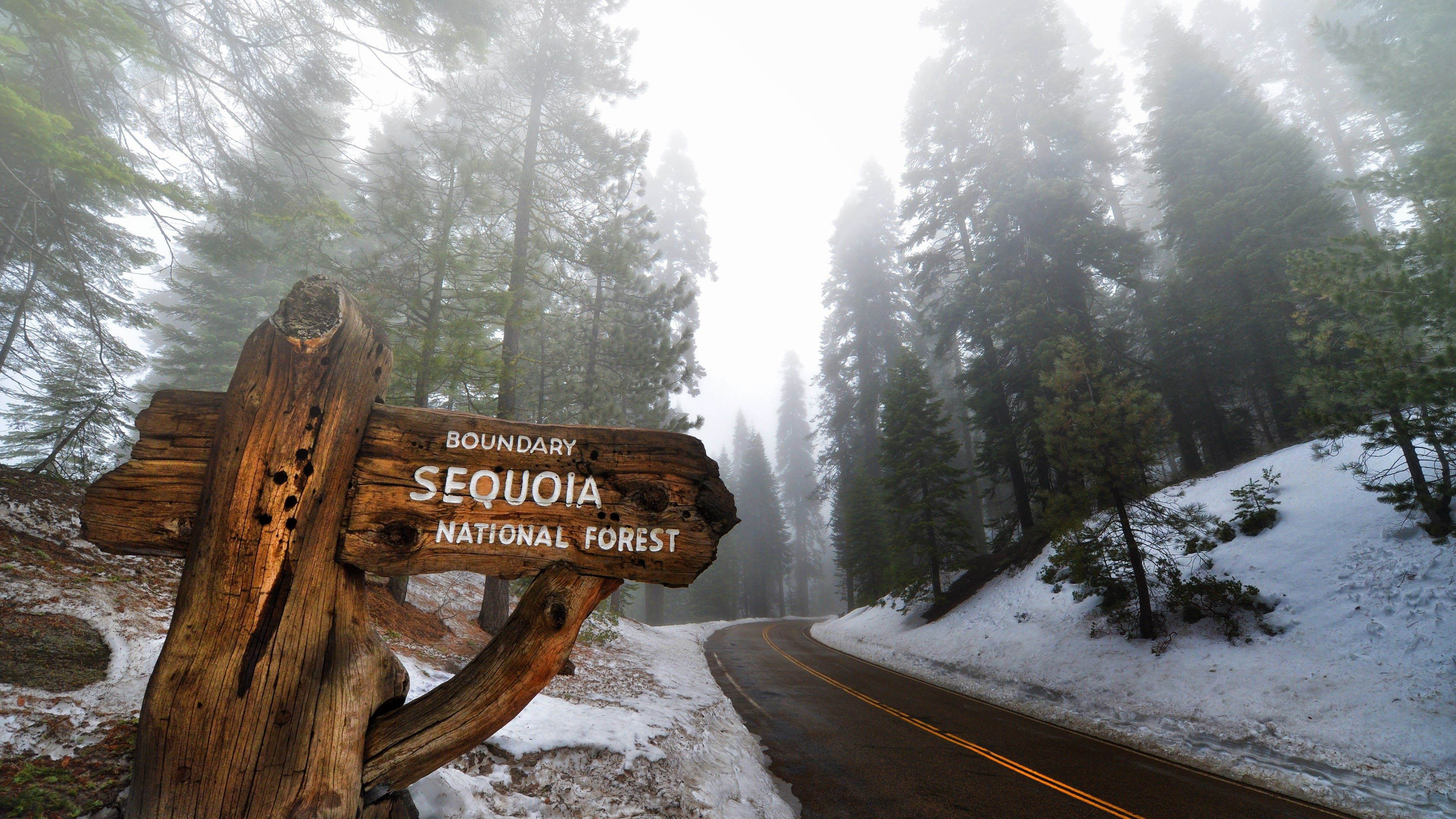 Sequoia National Park HD wallpapers