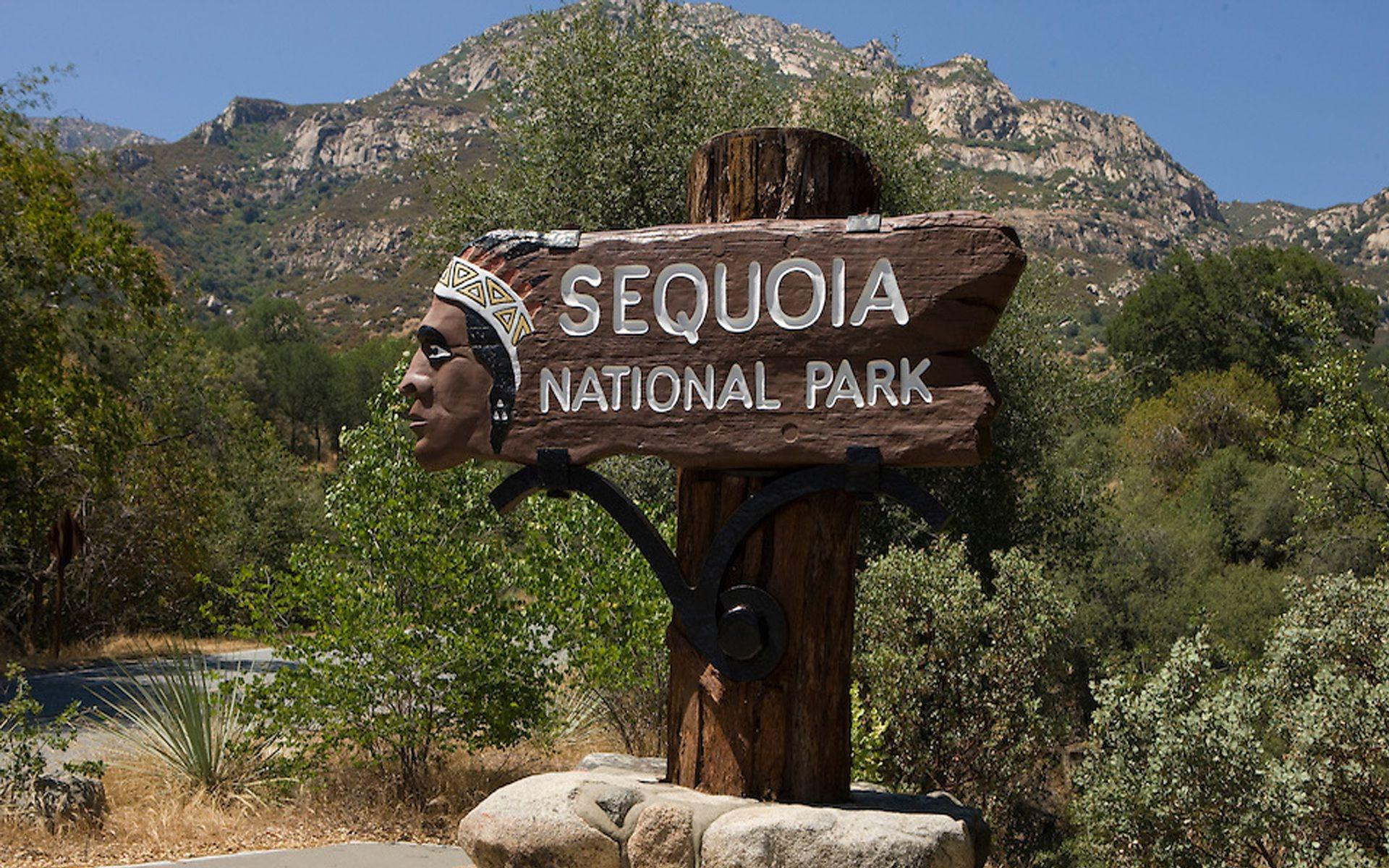 41+ Sequoia National Park Wallpapers, Top Ranked Sequoia National