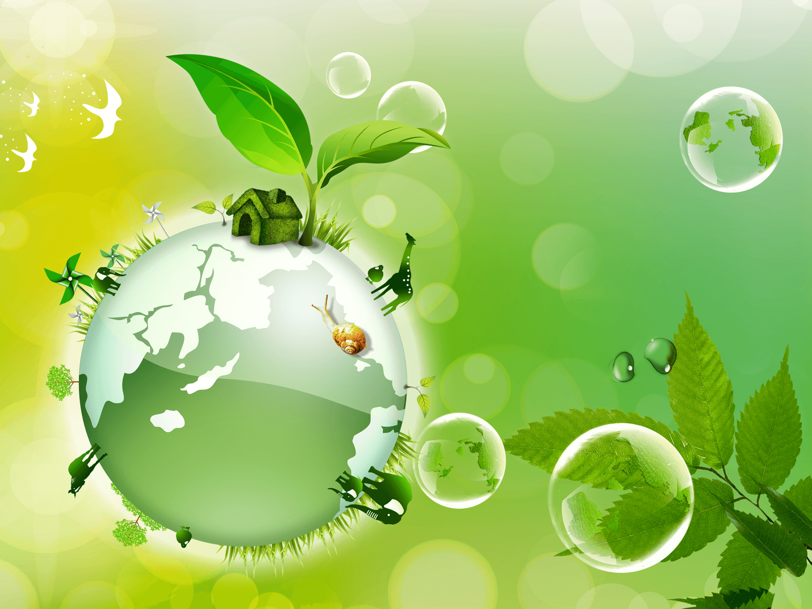 Hot,Spicy & Stuuning HD Wallpapers: Earth Day Wallpapers