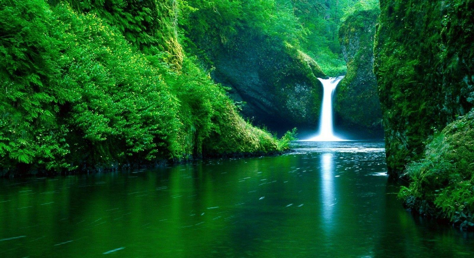 Nature Wallpapers For Desktop Backgrounds Full Screen Wallpaper Cave