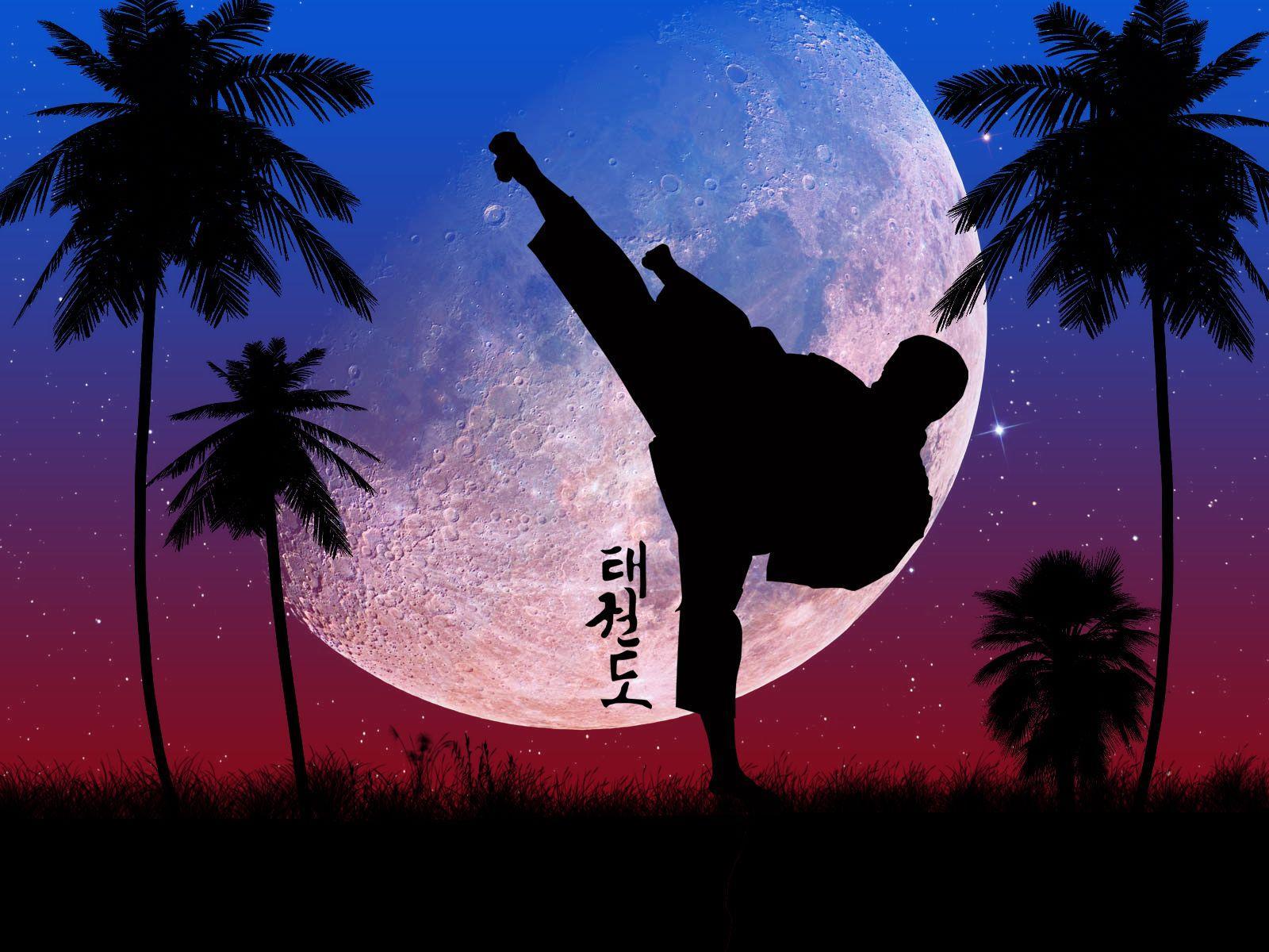 Taekwondo HD Wallpapers - Wallpaper Cave