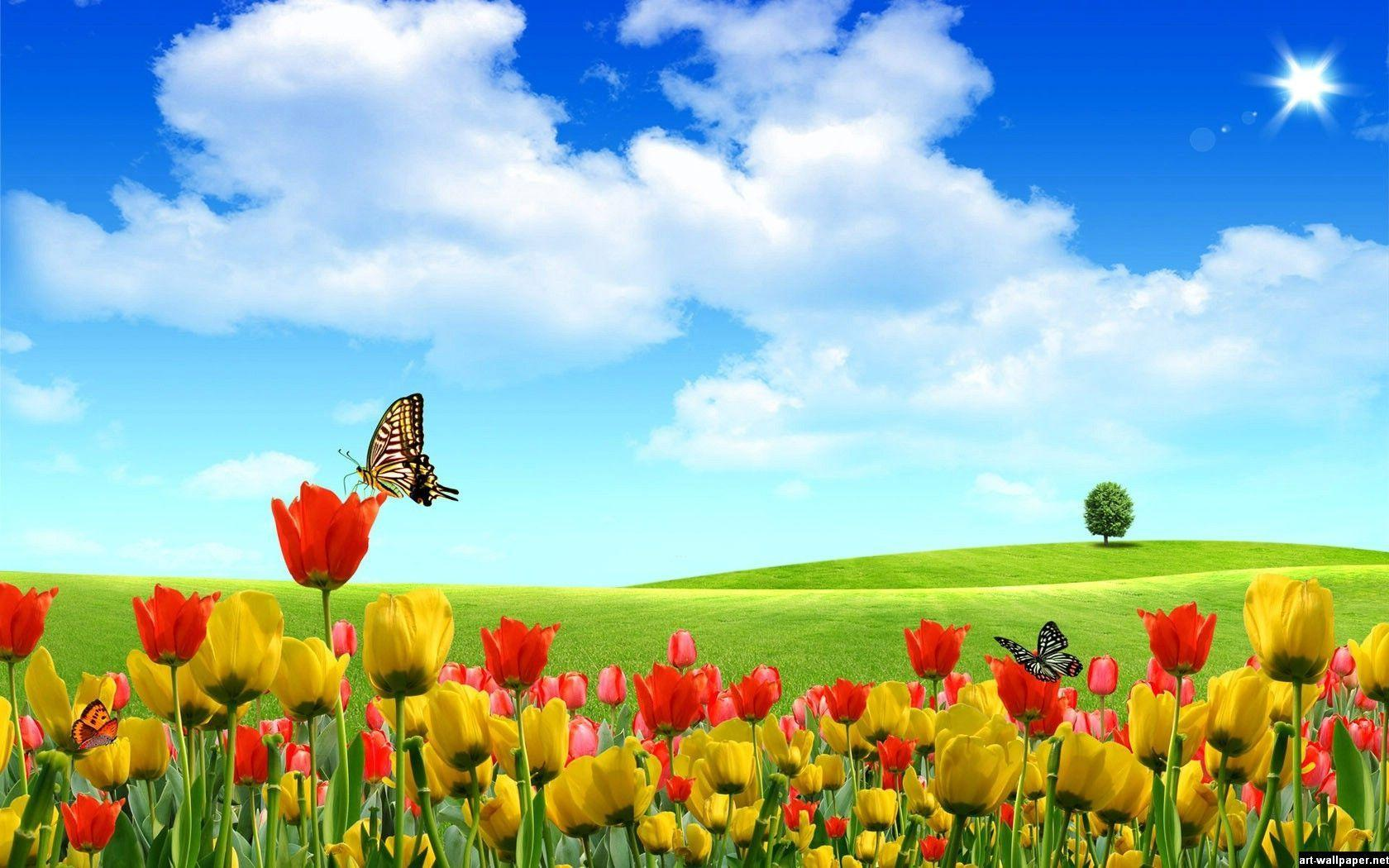 Full Hd Wallpapers 1080p Widescreen Nature Desktop Dwiky Shop Powered By Doodlekit