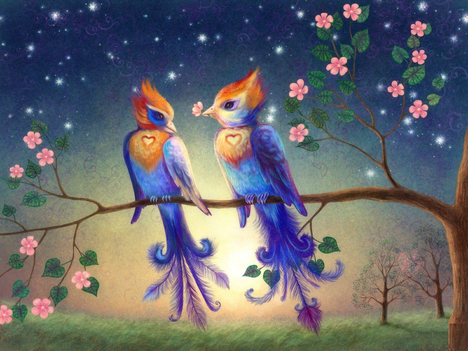 Beautiful Wallpapers Of Love Birds Wallpaper Cave
