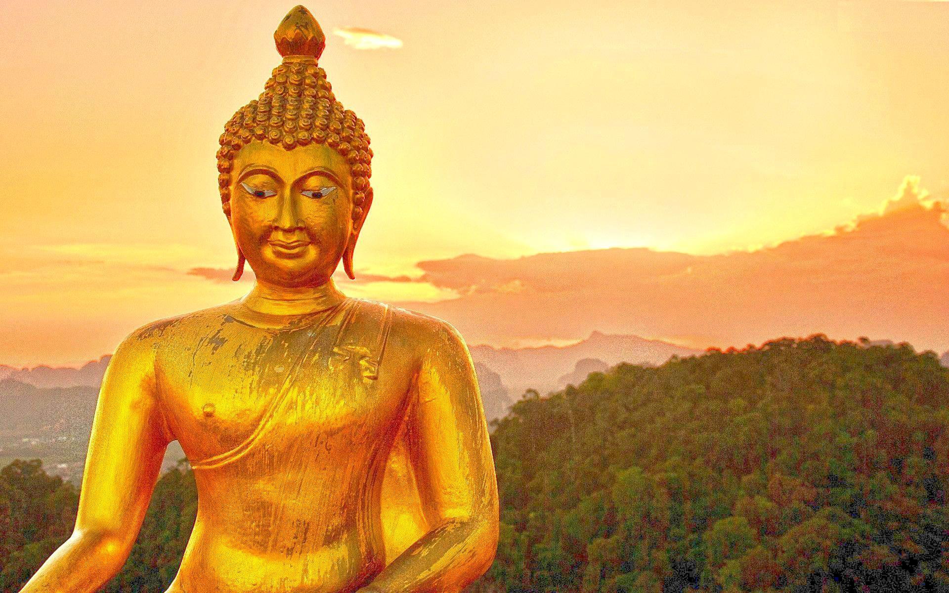 gautam buddha wallpapers hd wallpaper cave
