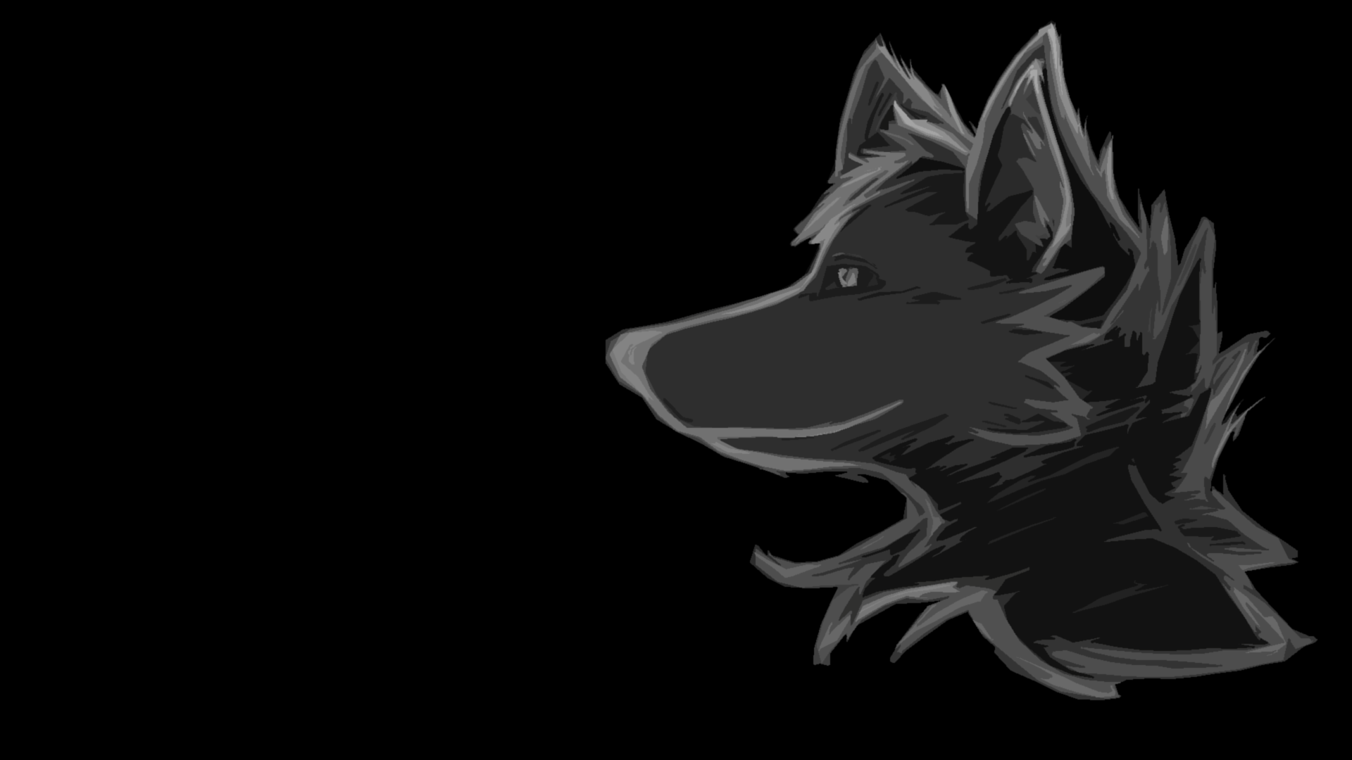 Black Wolf Wallpapers Hd Wallpaper Cave