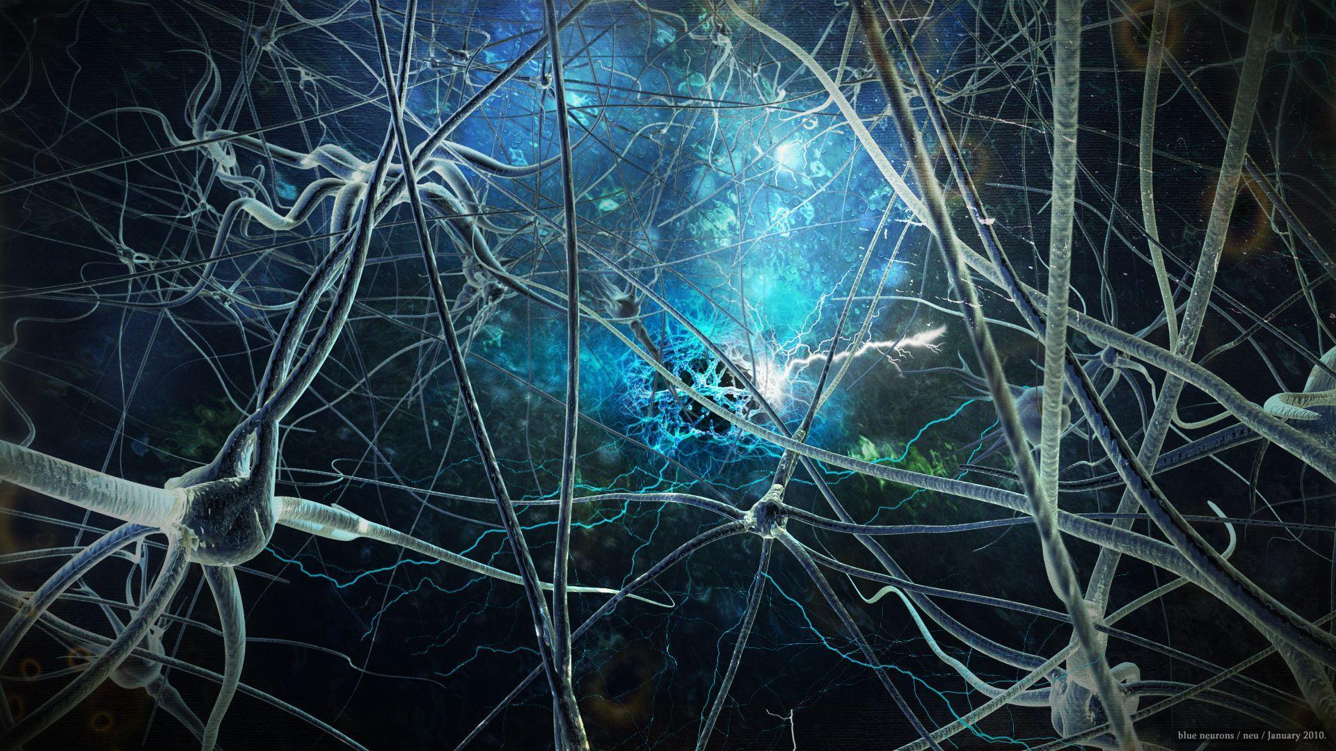 Neurons Wallpapers - Wallpaper Cave