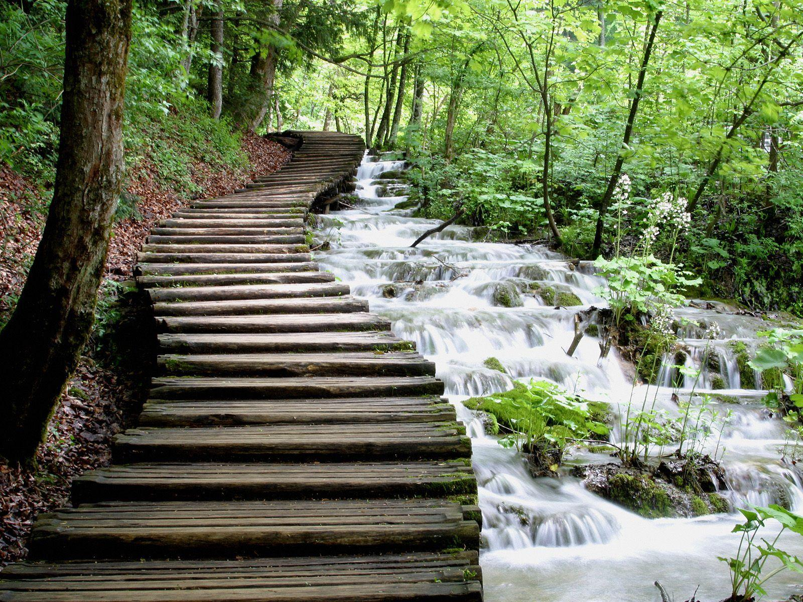 Croatia's Plitvice Lakes, 16 lakes in the mountains covered with