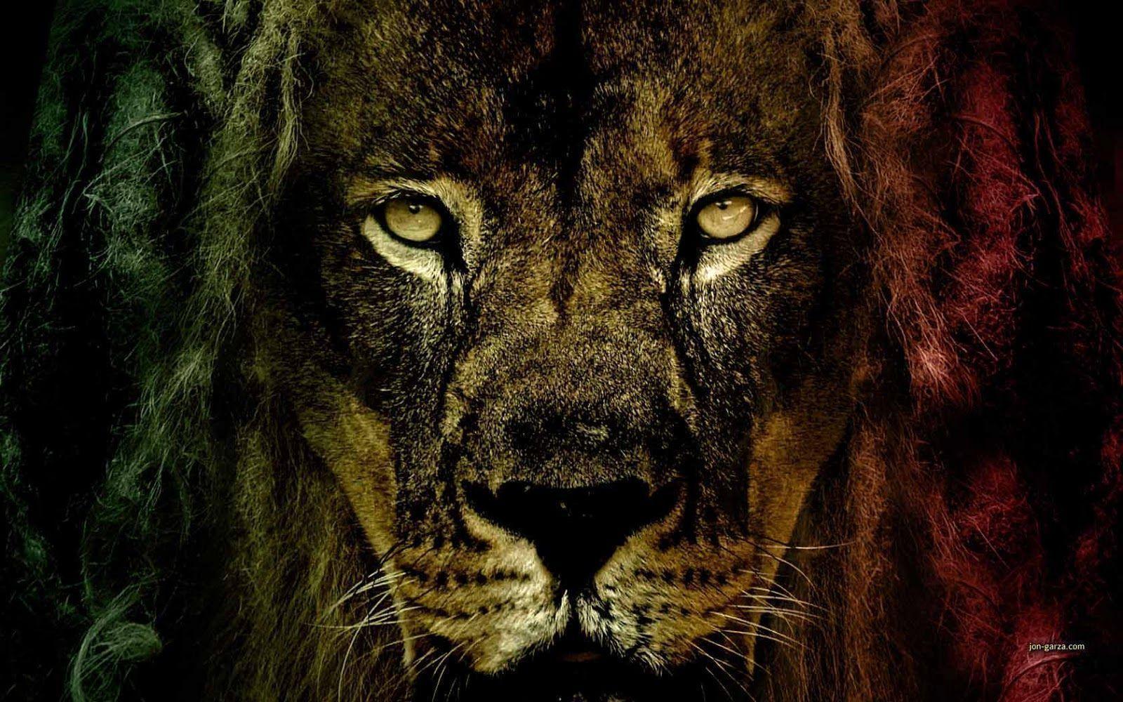 Rasta Lion Wallpapers Group (57+)