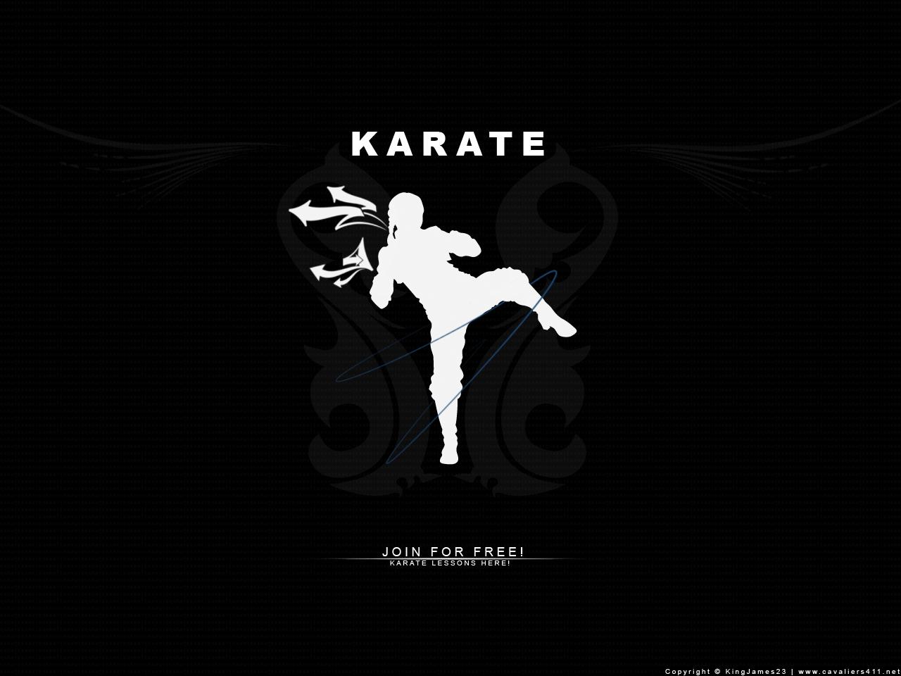 kyokushin karate full hd wallpapers - wallpaper cave