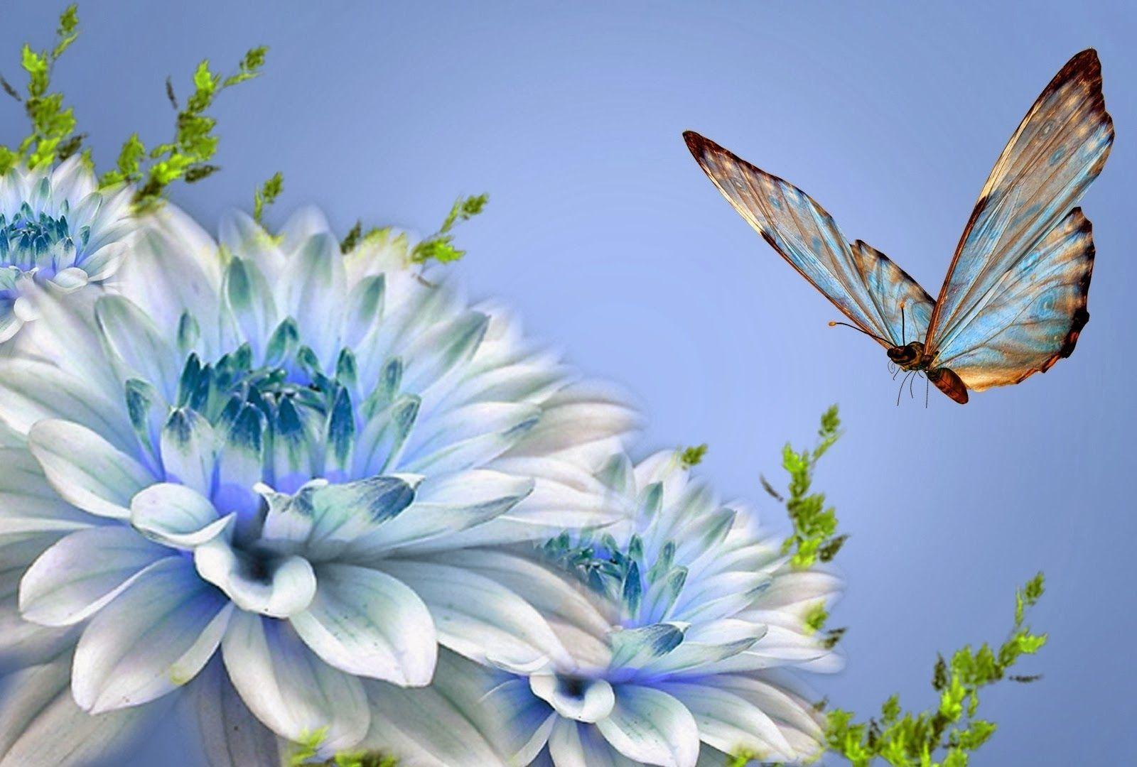 Beautiful Nature Love Wallpapers - Wallpaper Cave