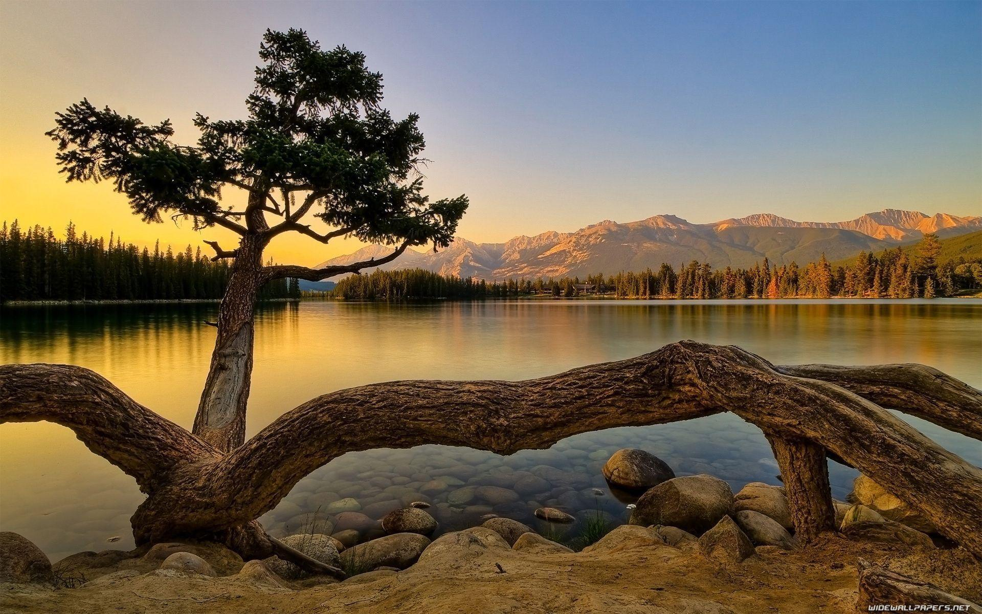 Nature Backgrounds Hd Images Wallpaper Cave