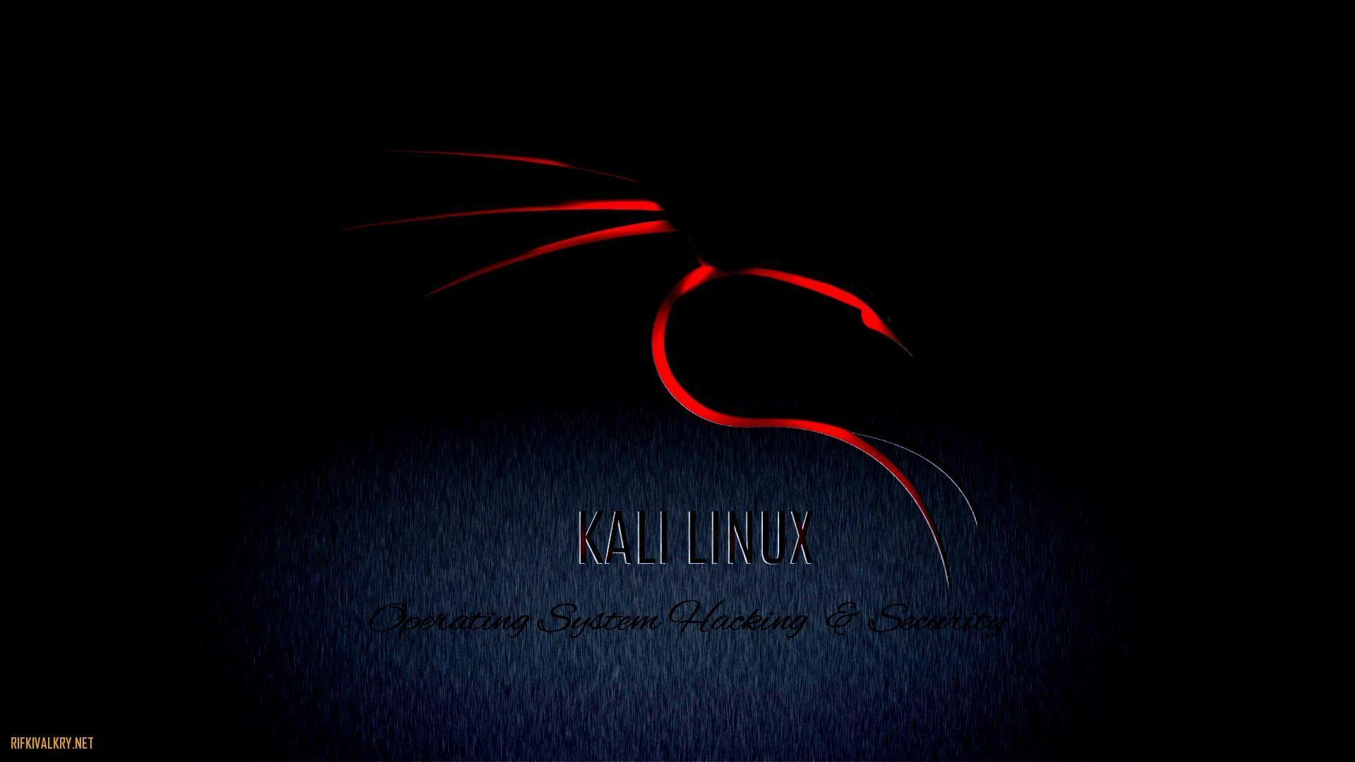 Kali Linux Wallpapers 1920x1080 - Wallpaper Cave