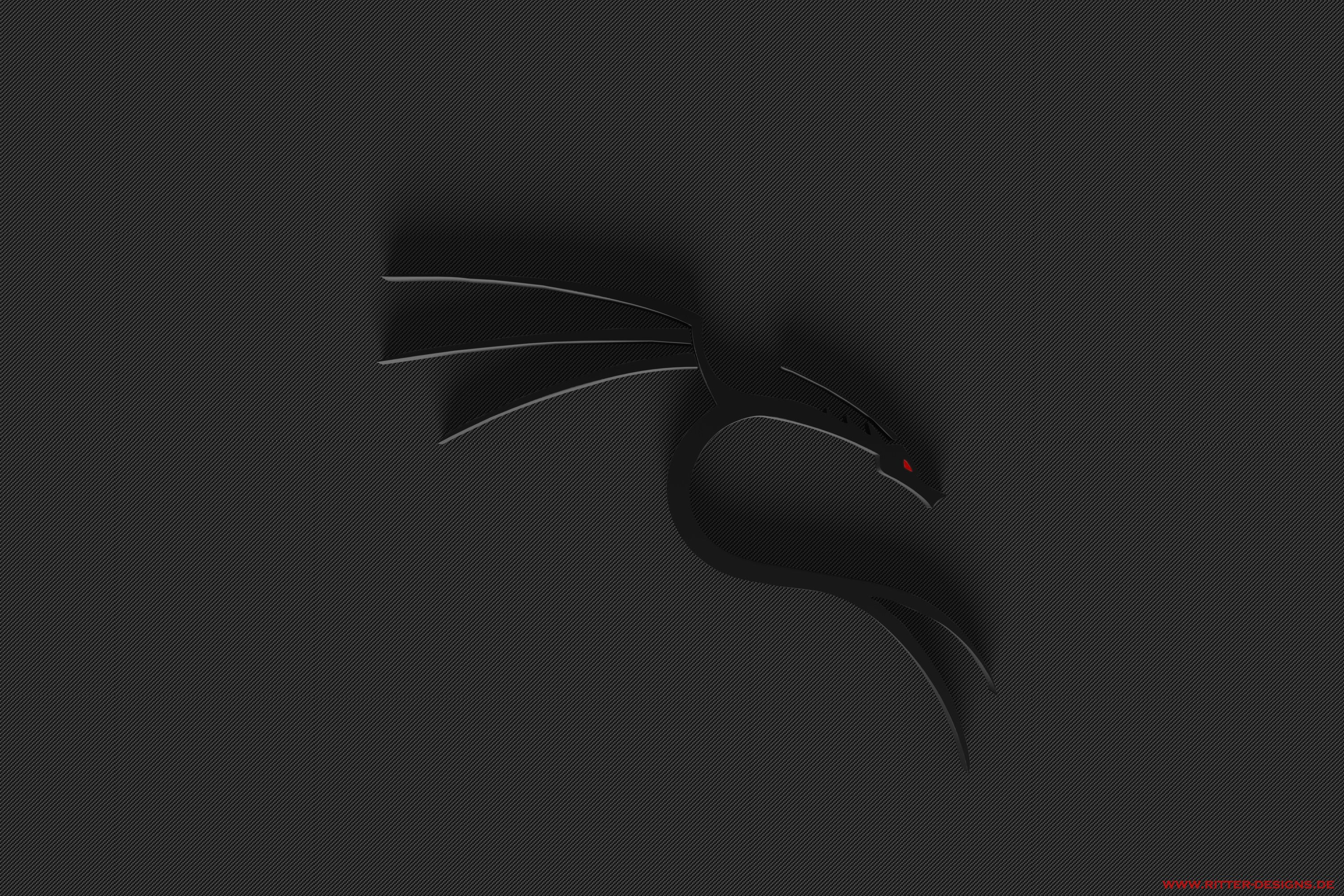 Kali Linux Wallpapers 1920x1080 Wallpaper Cave