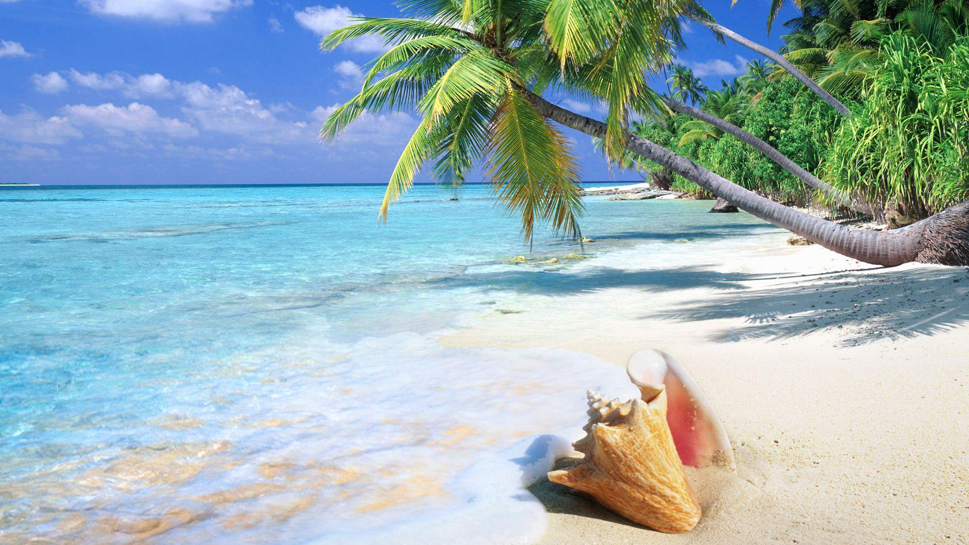Tropical Island Beach Ambience Sound: Beach Wallpapers HD 1920x1080