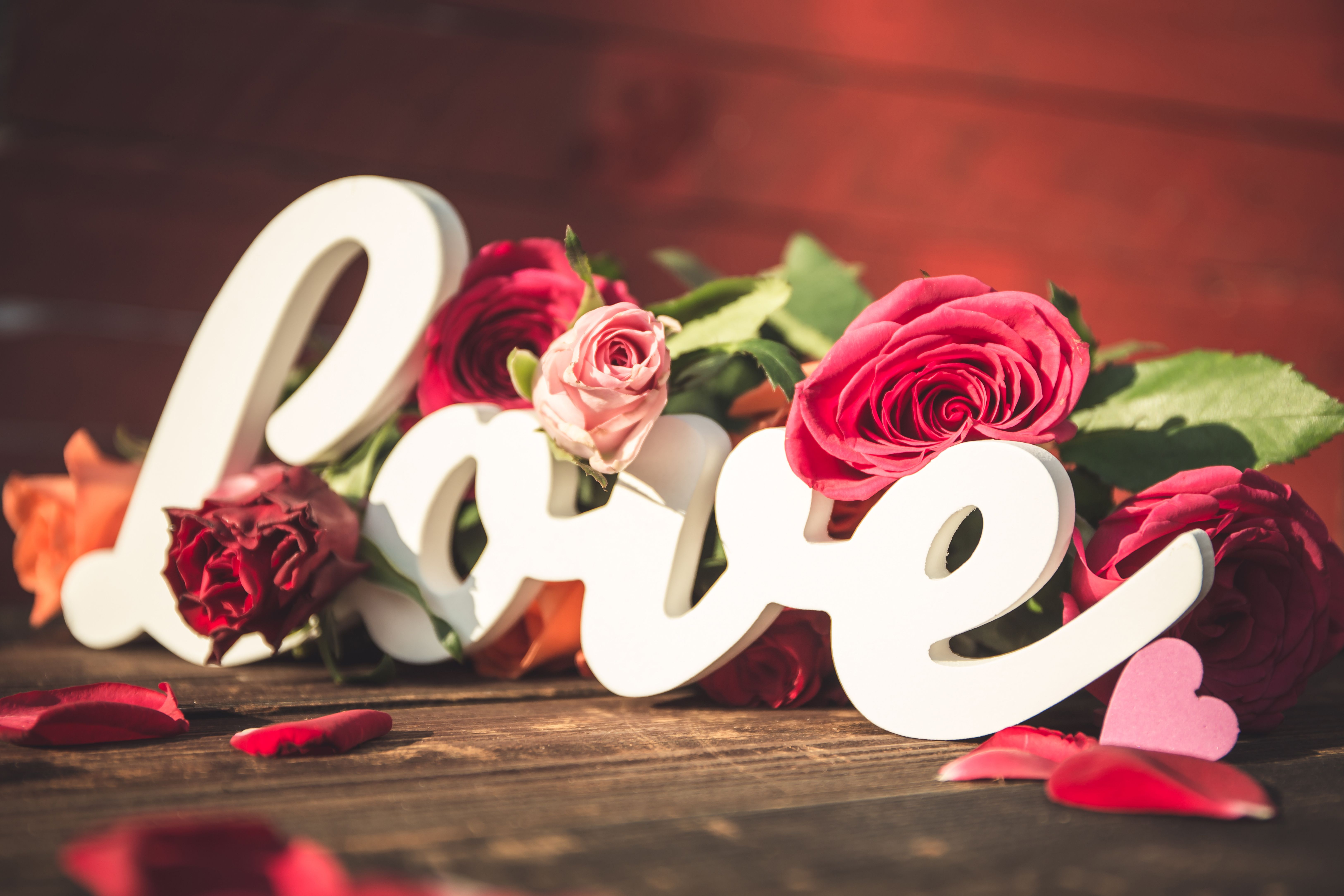 Wallpapers Love, Roses, HD, 5K, Love,
