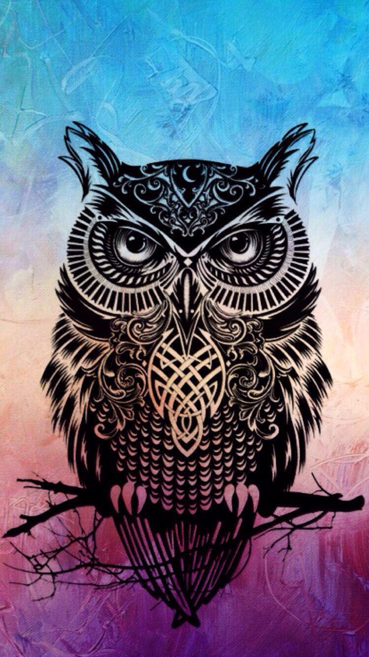 Wallpapers Owl Wallpaper Cave