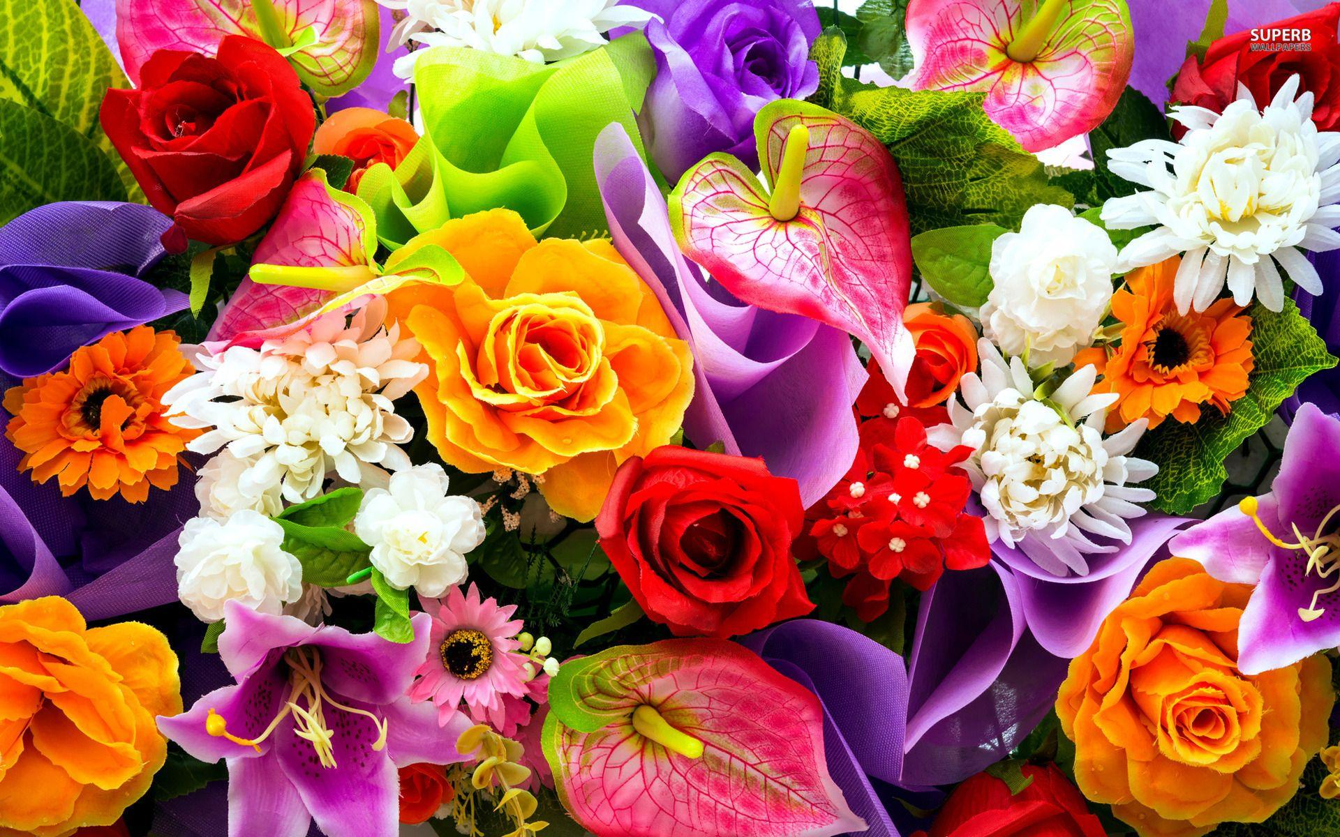 Colourful Flower Wallpapers Wallpaper Cave