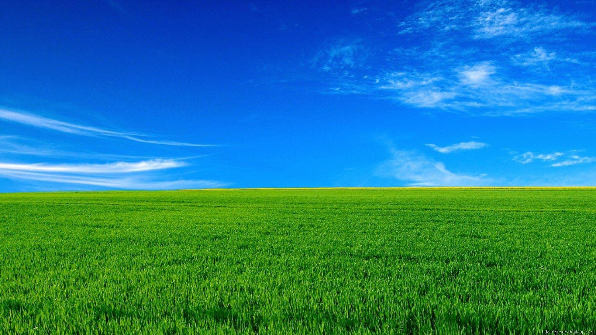 Download Sky With Green Nature Wallpapers