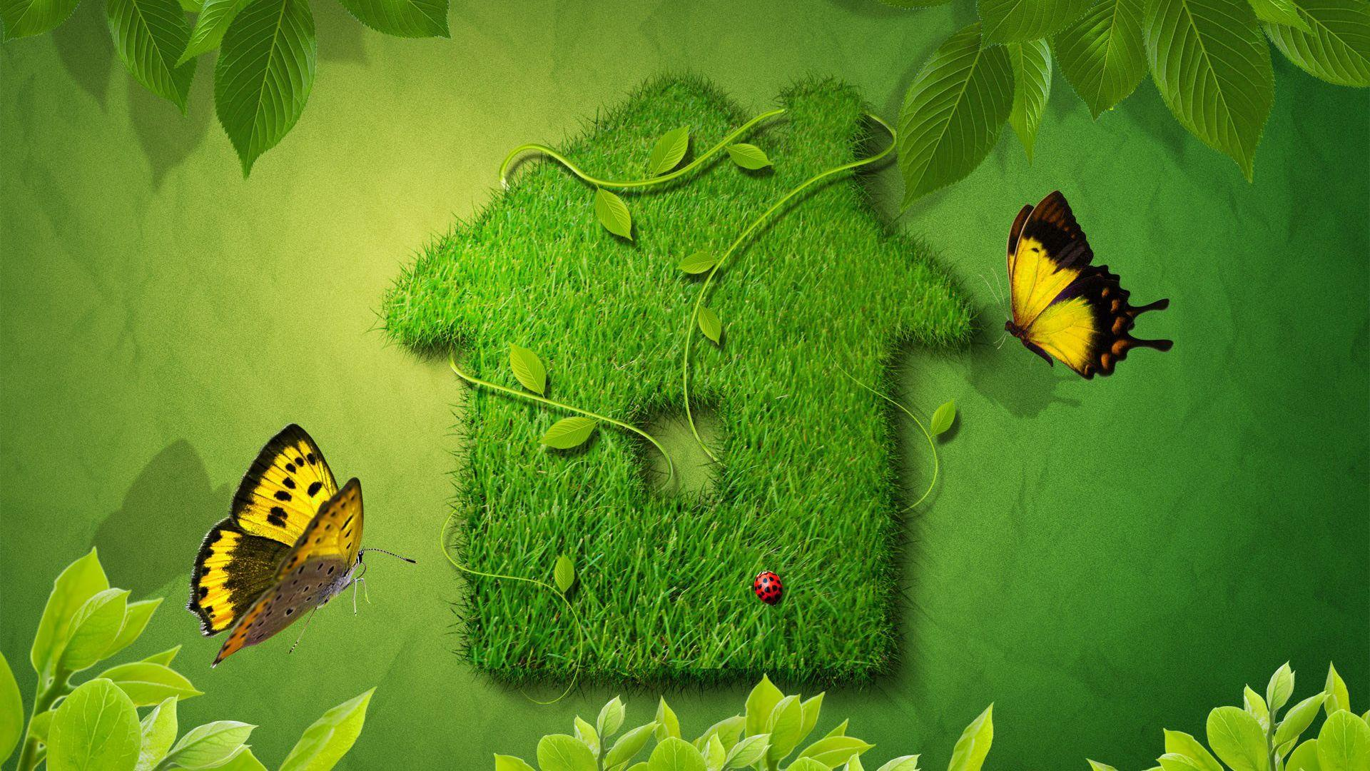 Creative Green House – 1080p HD Wallpaper0 | Stuff to Buy ...