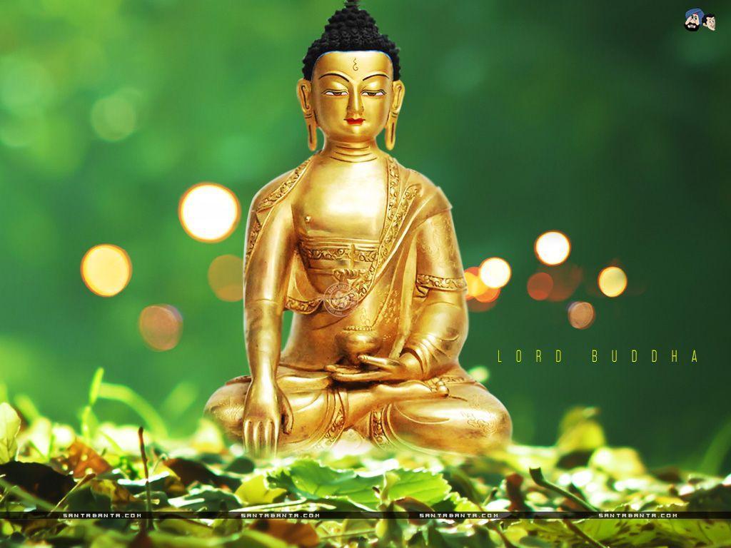 Buddha Wallpapers Hd Wallpaper Cave