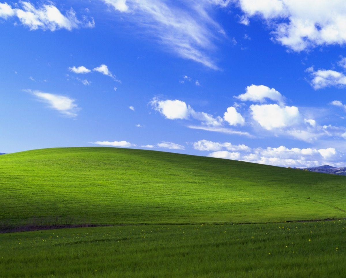 The Story Behind the World's Most Famous Desktop Backgrounds