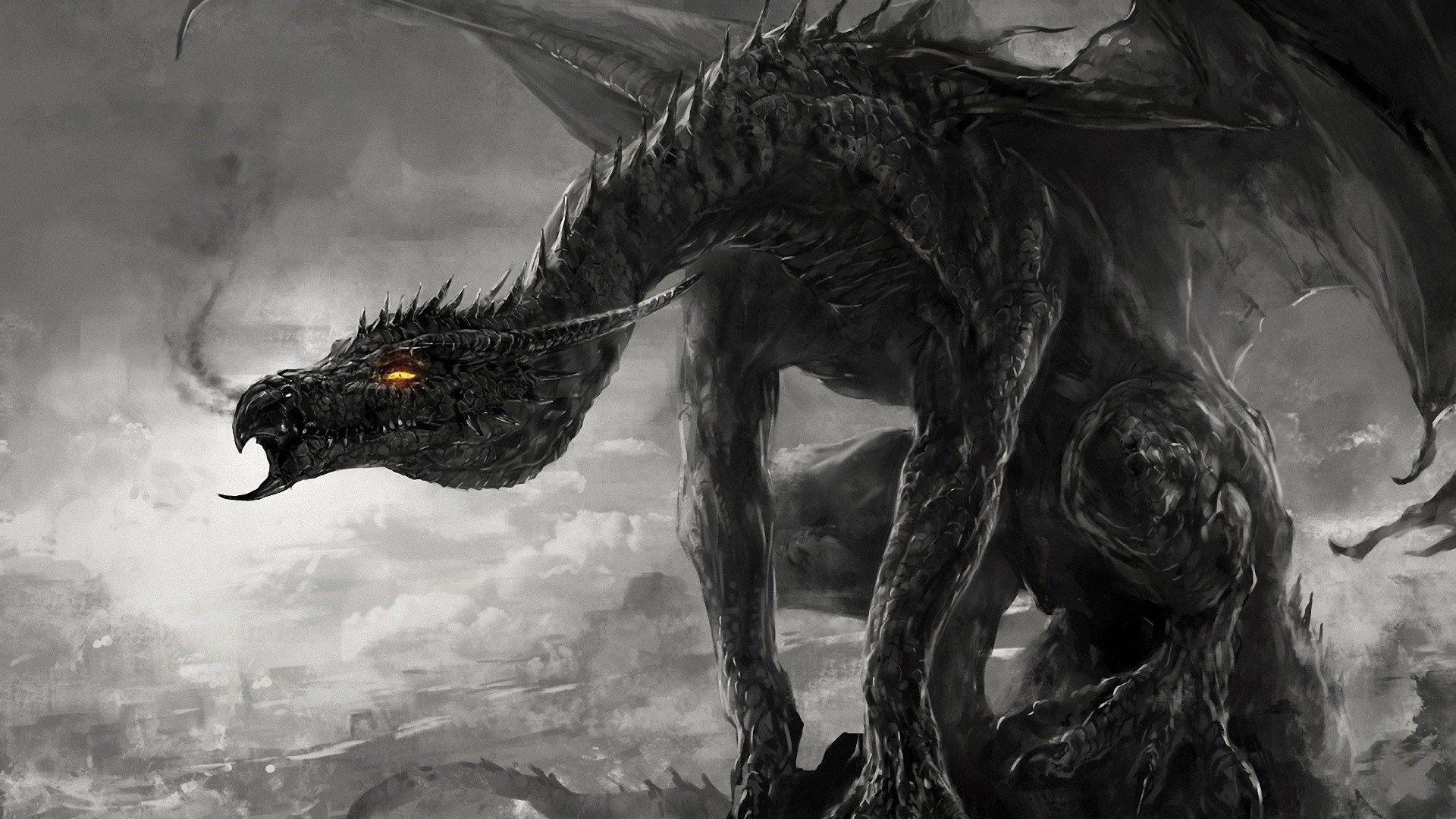 High Resolution Dragon Wallpapers HD P Free wallpapers download 1920