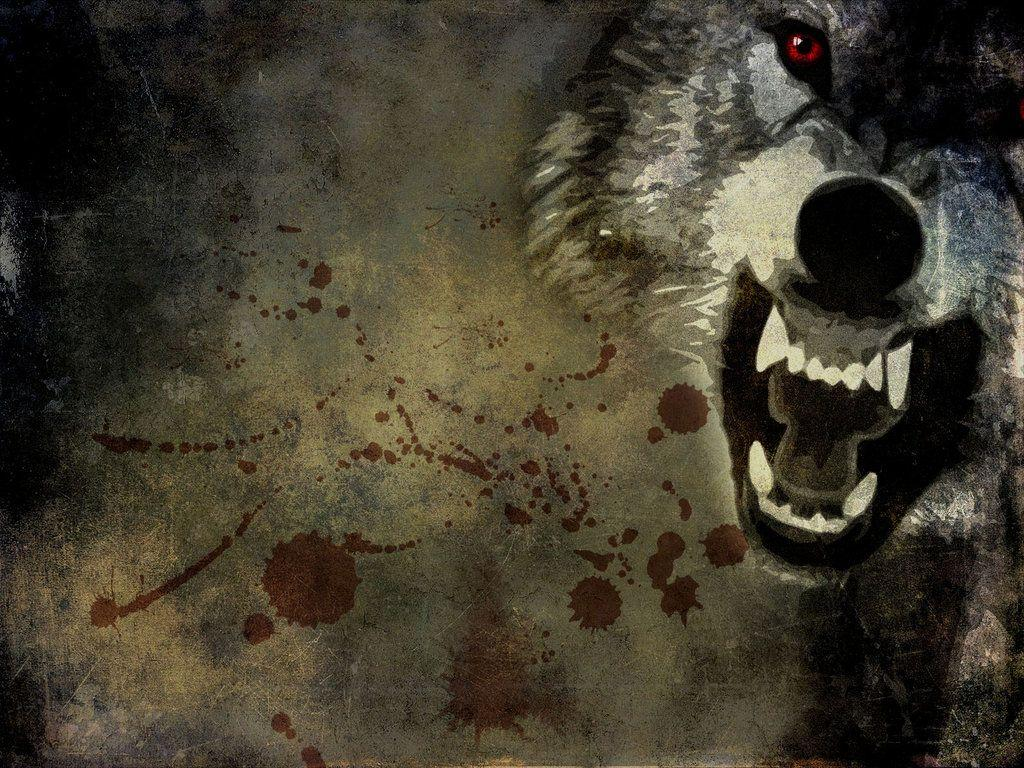 Angry Wolf Wallpapers Hd Wallpaper Cave