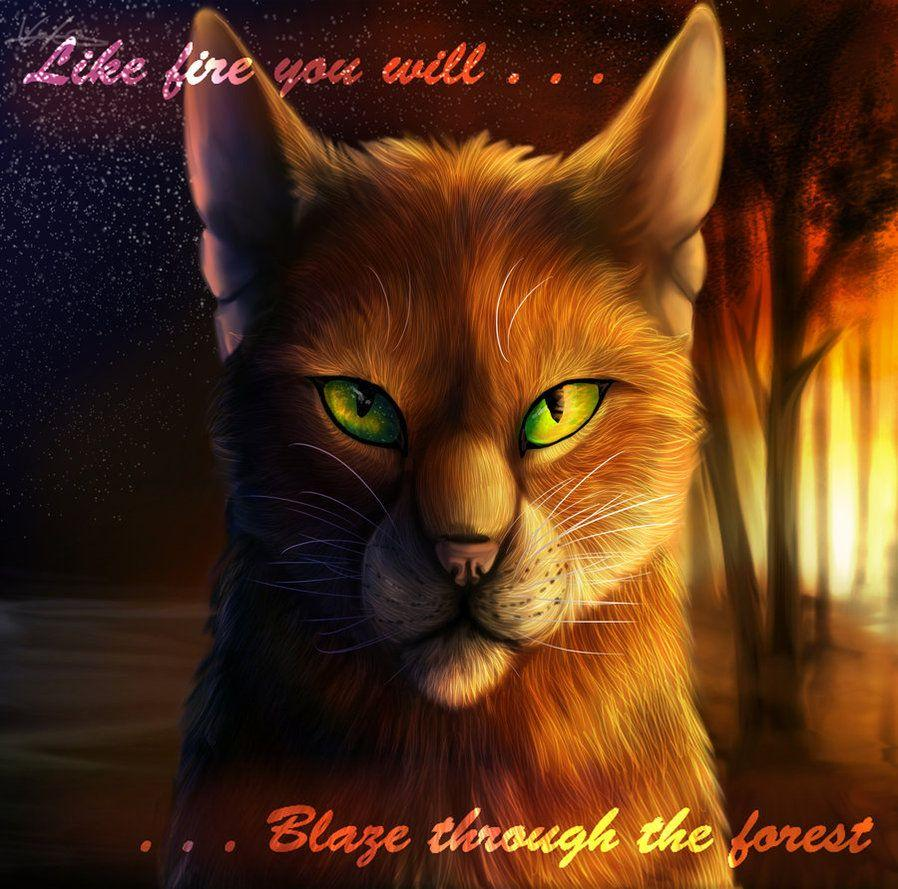 Forever Warriors Cats Images Firestar HD Wallpaper And Background