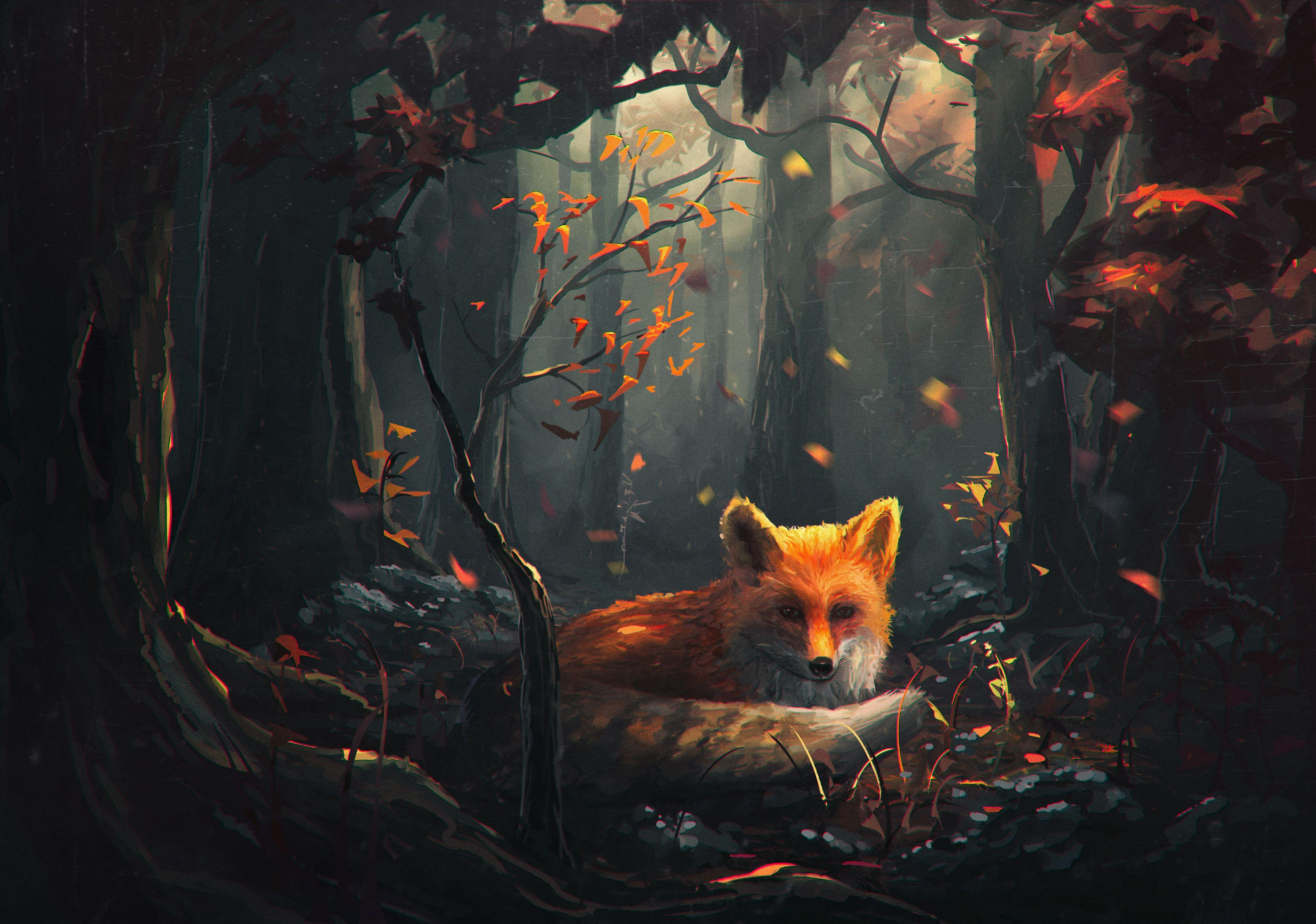 Anime Fox Wallpapers Wallpaper Cave