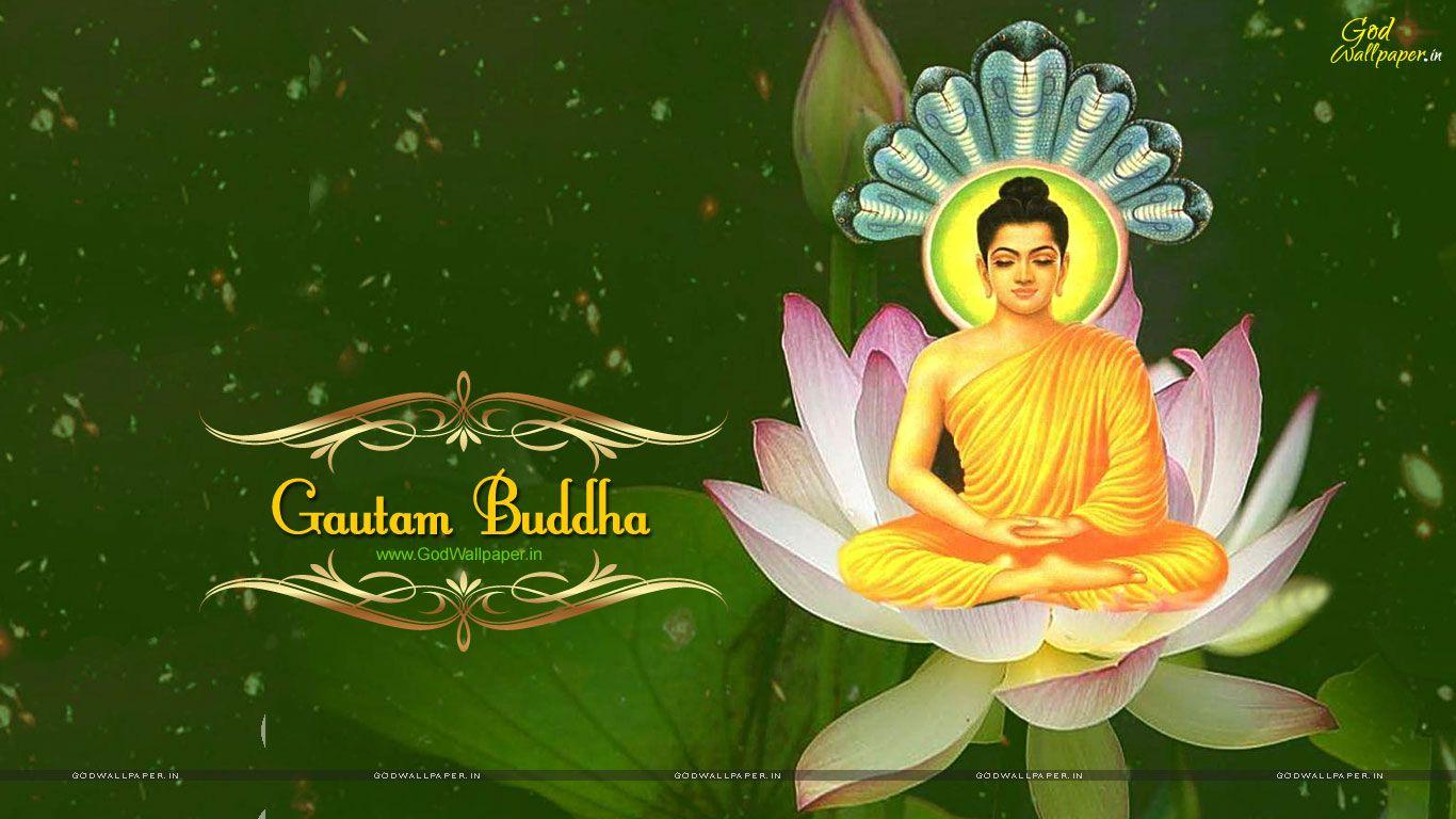 Lord Buddha Live Wallpaper Download Enam