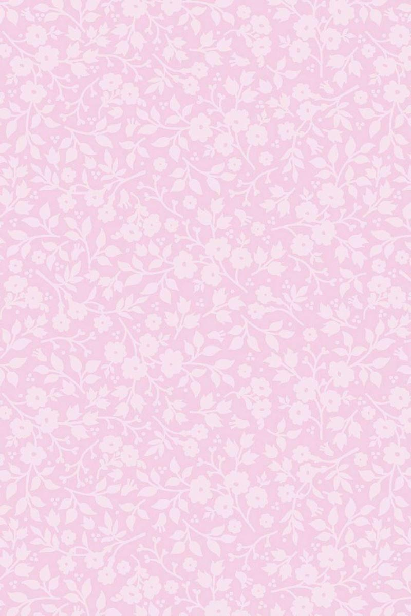 Baby Pink Wallpapers - Wallpaper Cave