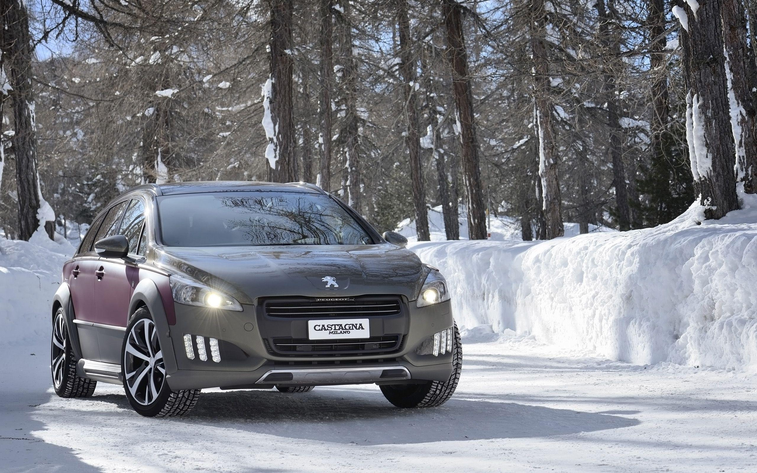 2014 Castagna Peugeot 508 RXH Wallpapers