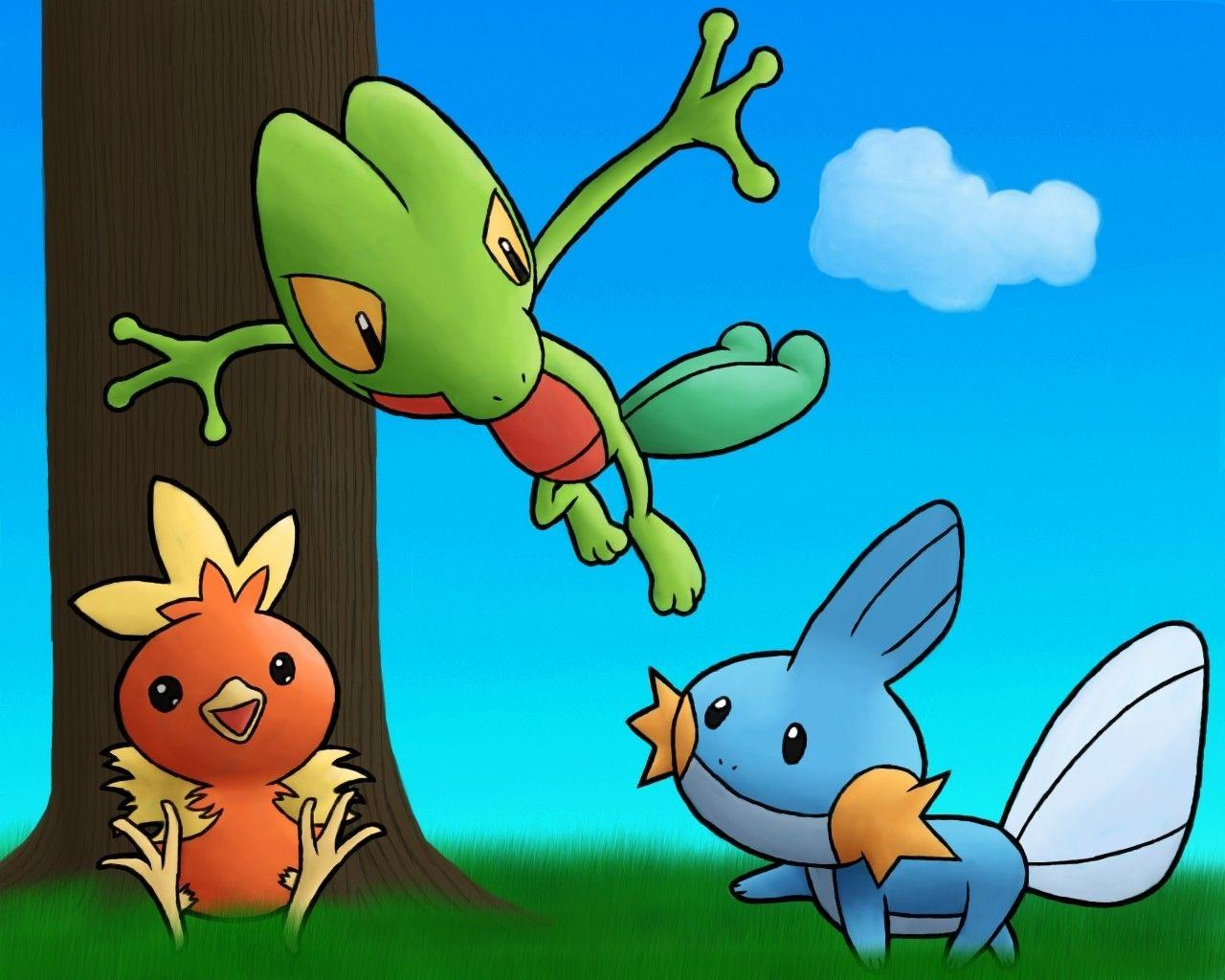 pokemon mudkip treecko torchic 1280x1024 wallpapers High Quality