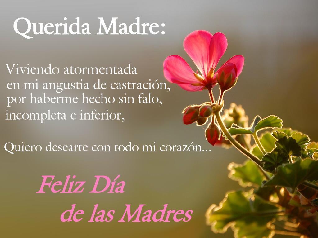Wallpaper Dia De Las Madres: Feliz Día De La Madre Wallpapers