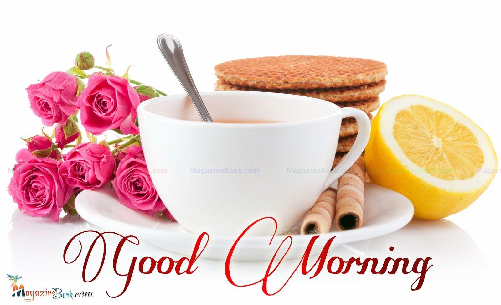 Good Morning New Wallpapers Wallpaper Cave