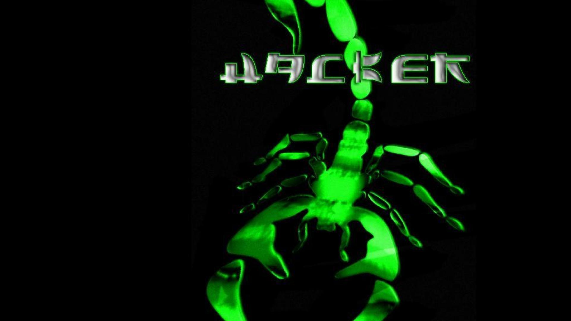 Green Hacker Skull Wallpapers HD - Wallpaper Cave