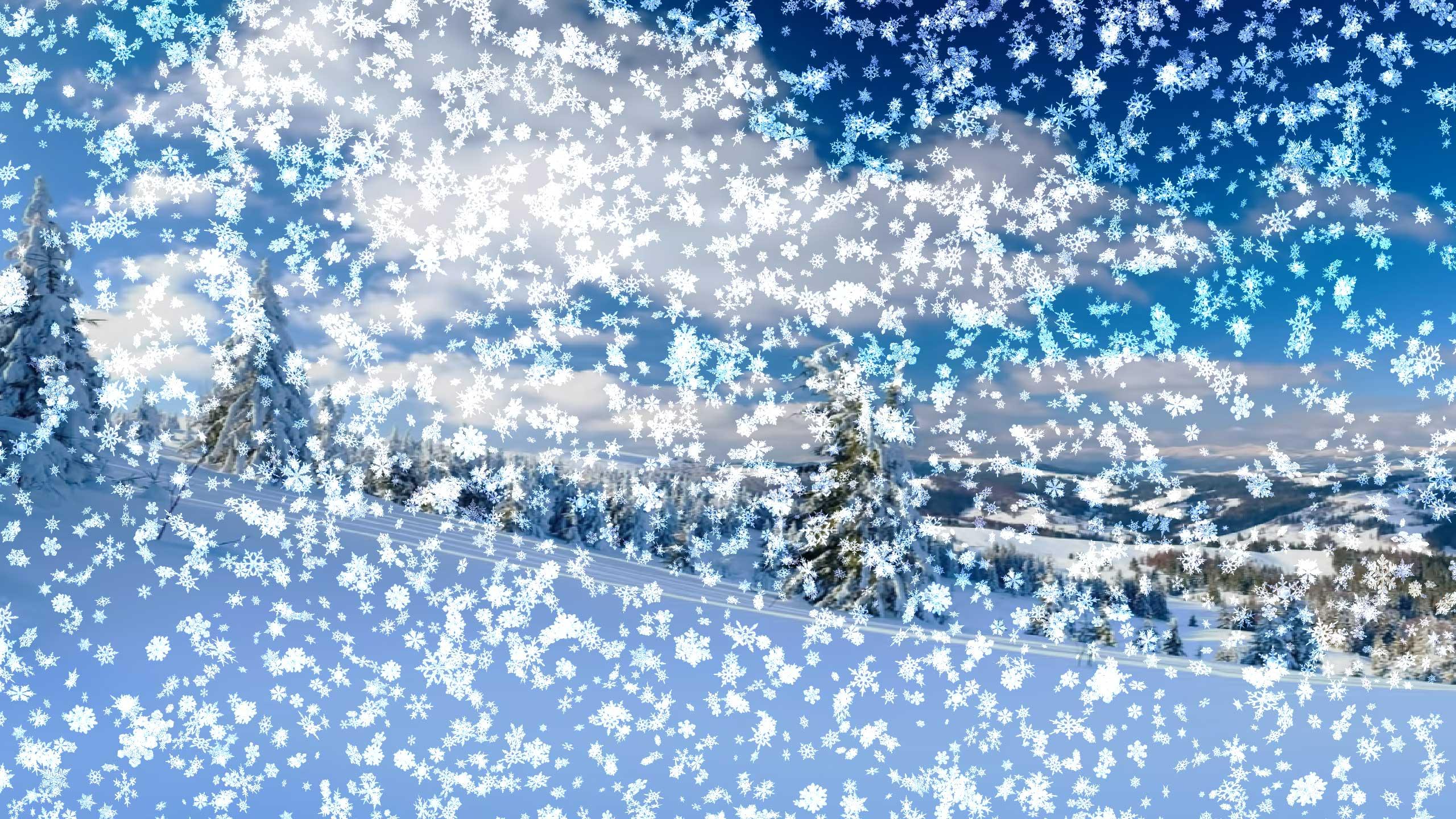 Открытки падающего снега, медведь прикольные