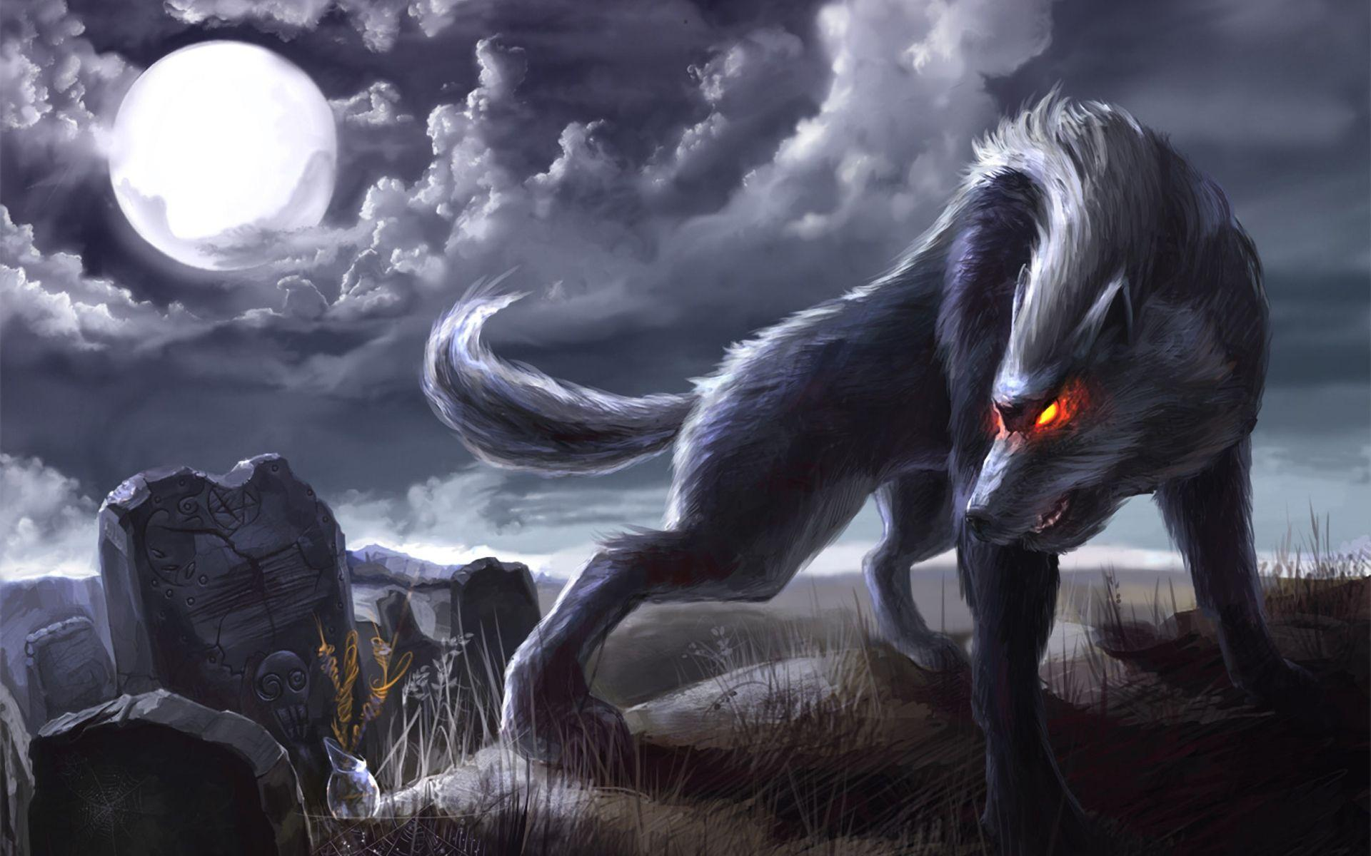 Wolf Wallpapers 3d Wallpaper Cave