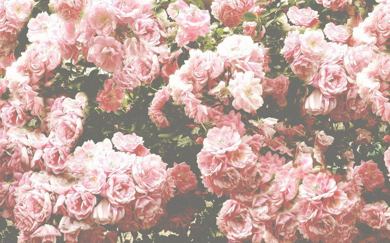 Floral Backgrounds Tumblr Wallpapers Kemecer Com Desktop Background