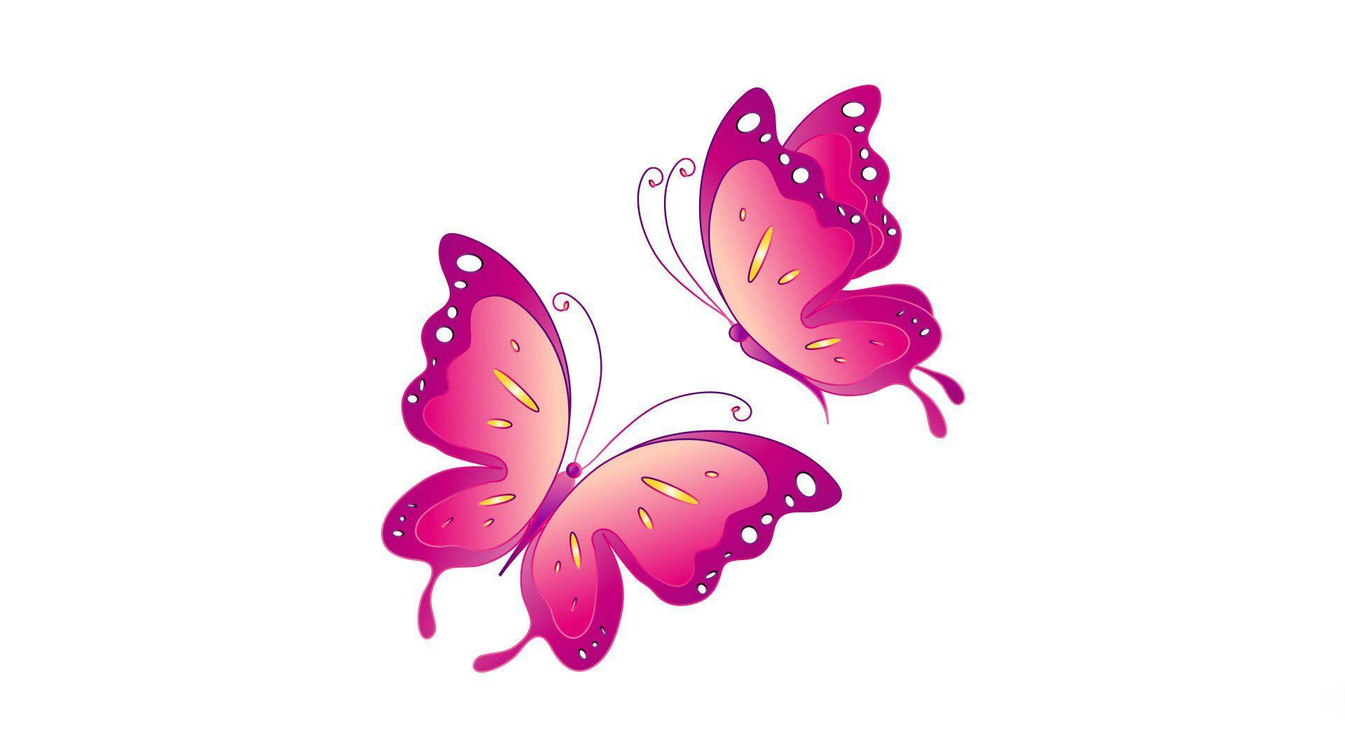 White and pink butterfly wallpaper rare photo