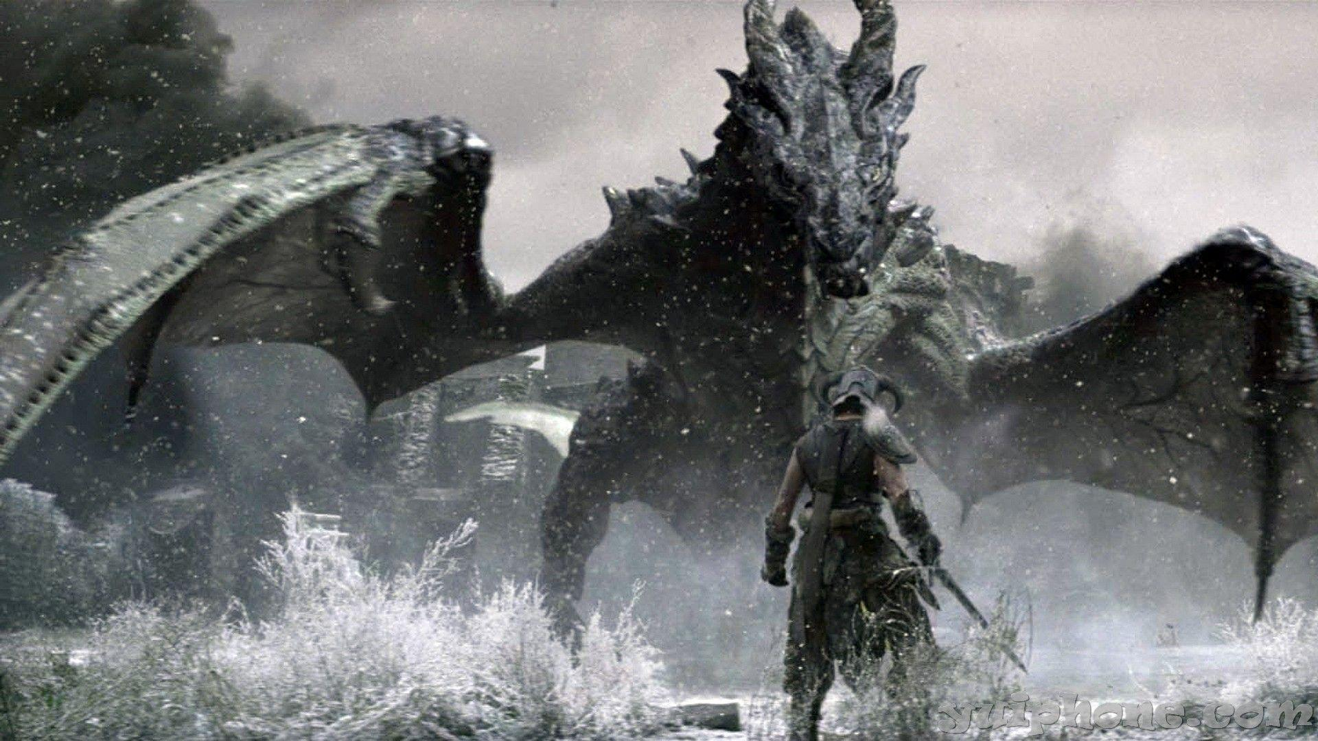 43 Skyrim Dragon Wallpaper